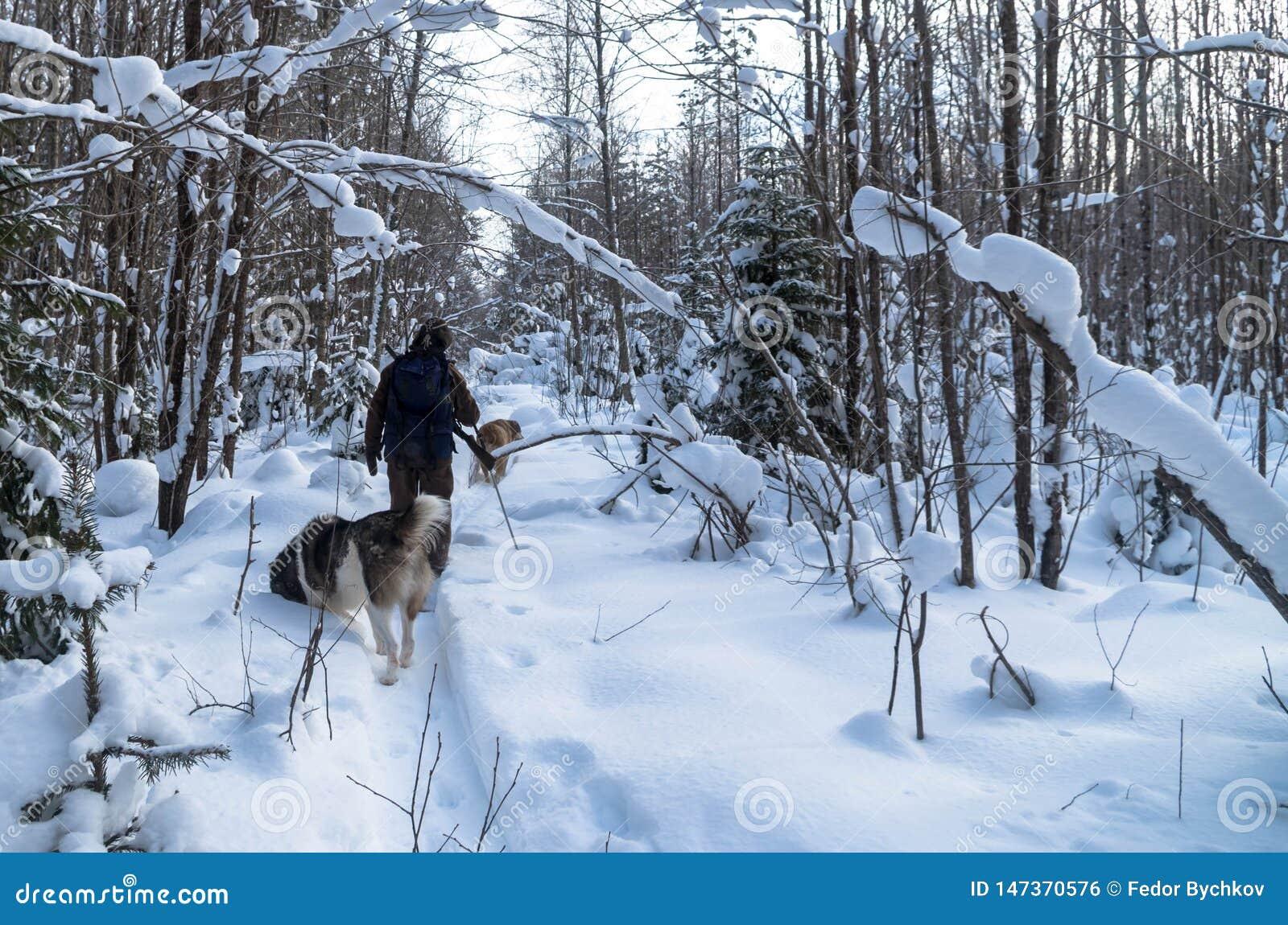 人打猎在冬天