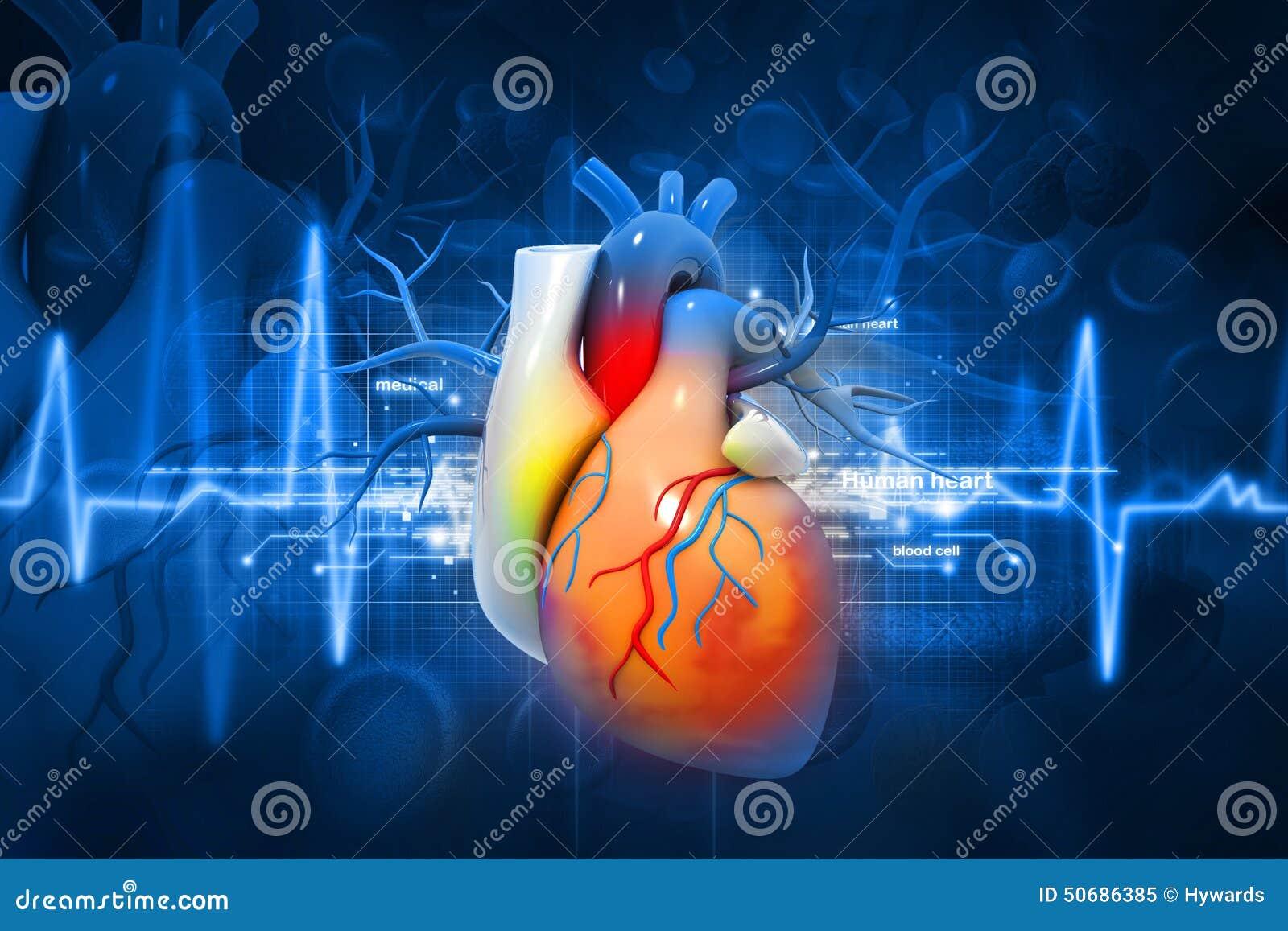 Download 人的心脏 库存例证. 插画 包括有 外皮, 医学, 背包, 发光, 女主持人, 器官, 关心, 心电图, 生活 - 50686385