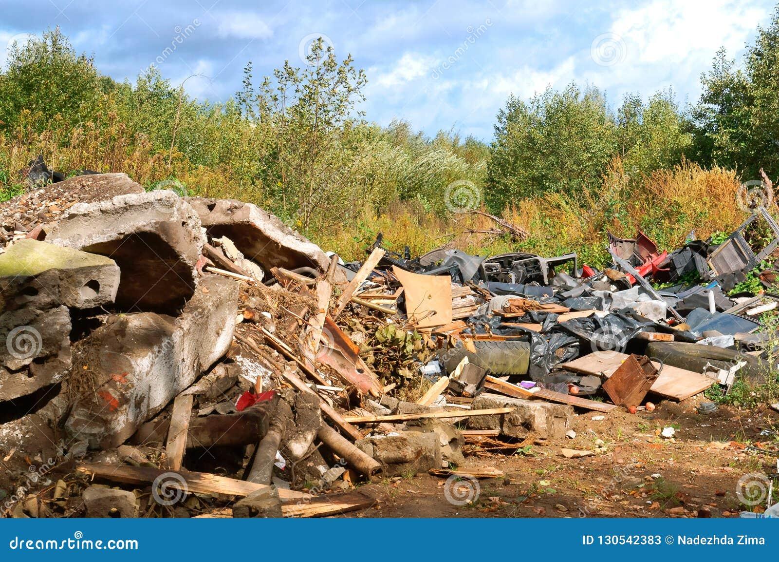 人的污染,垃圾堆在森林里