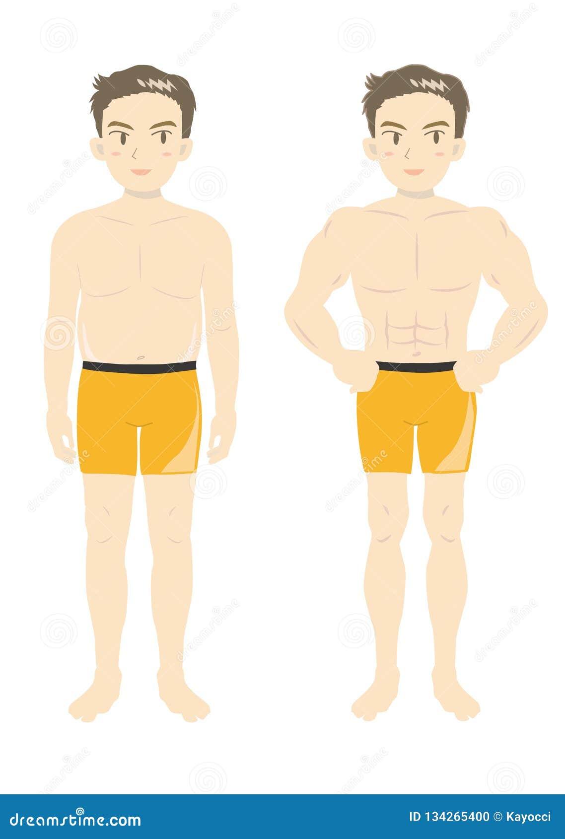 人的秀丽肌肉身体青年时期B