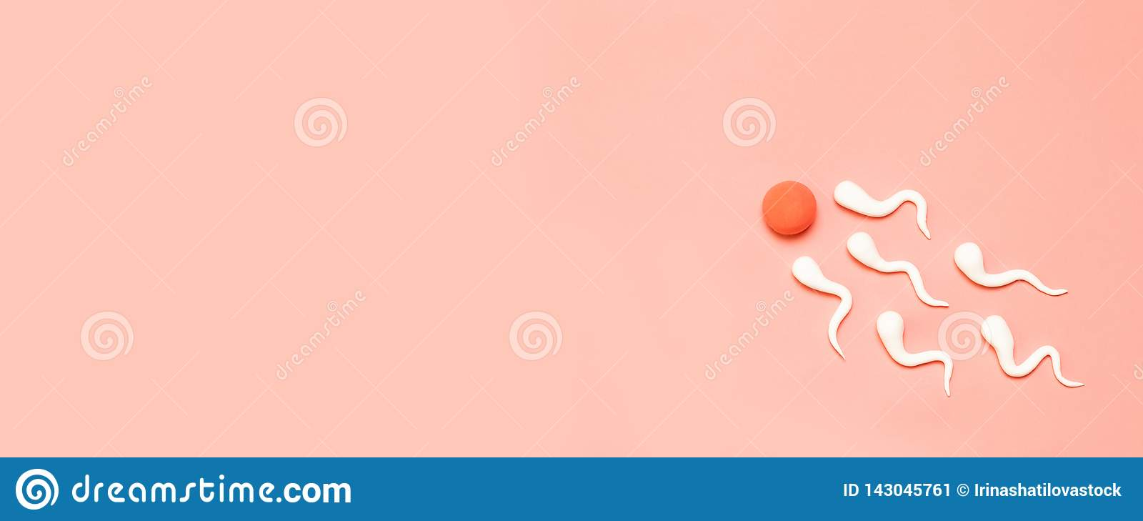 人的精液和卵子图