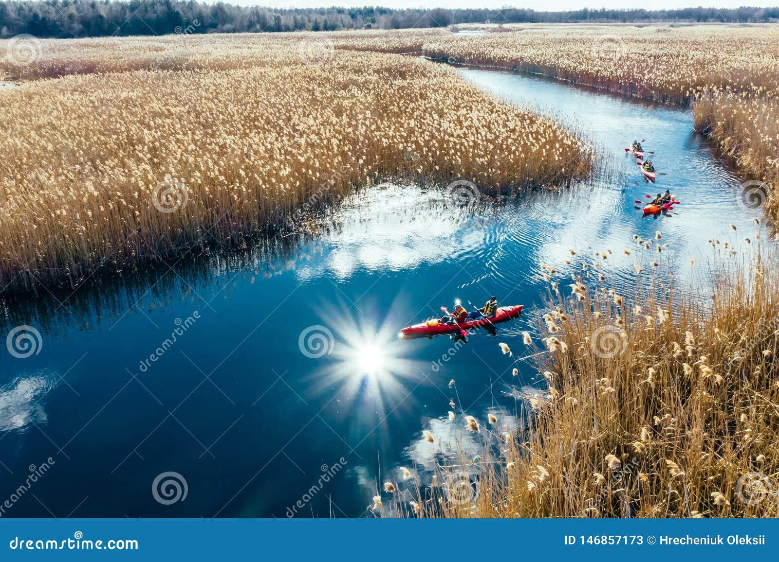 人皮船的在秋天河的芦苇中