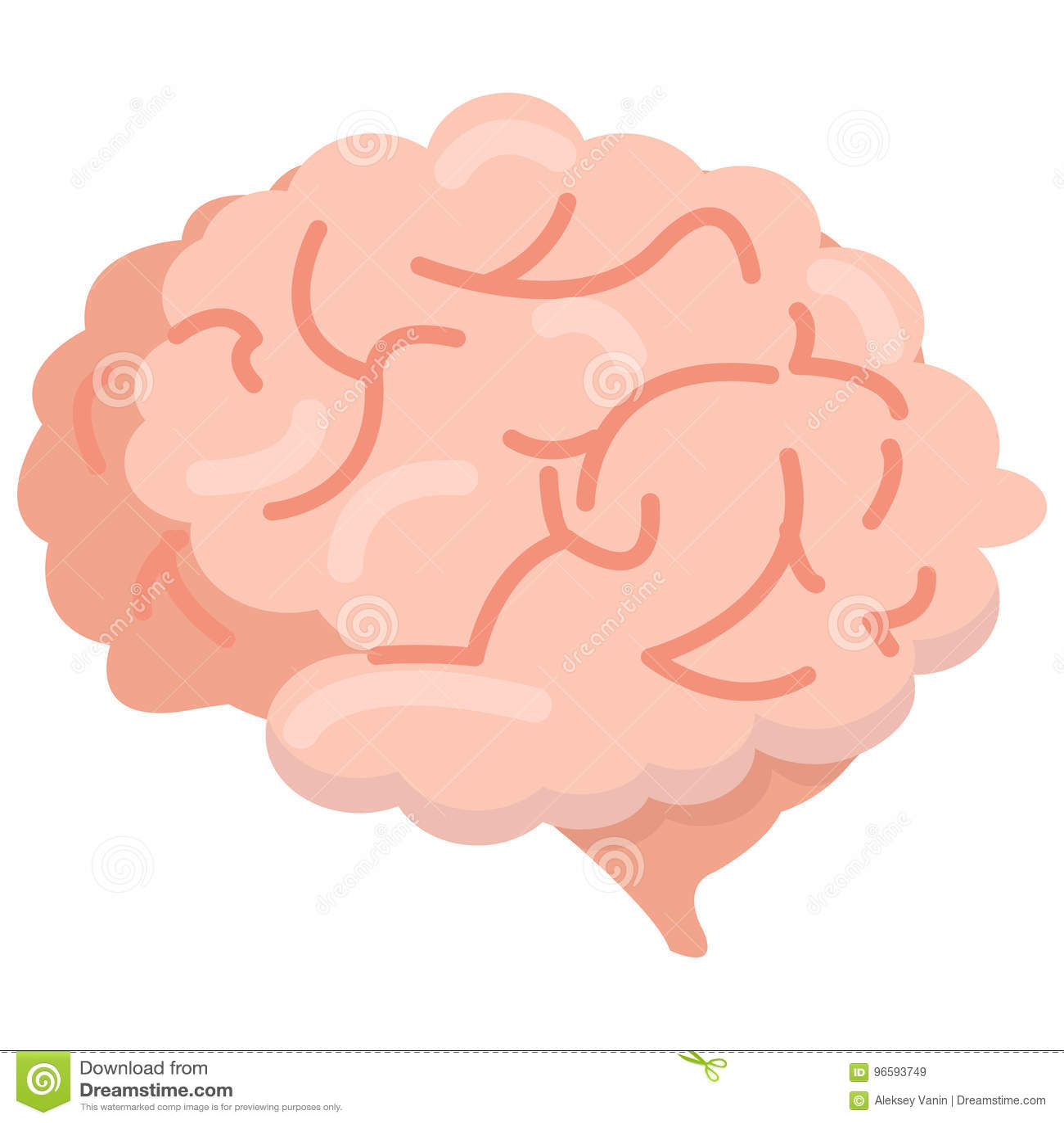 人脑器官象,传染媒介例证