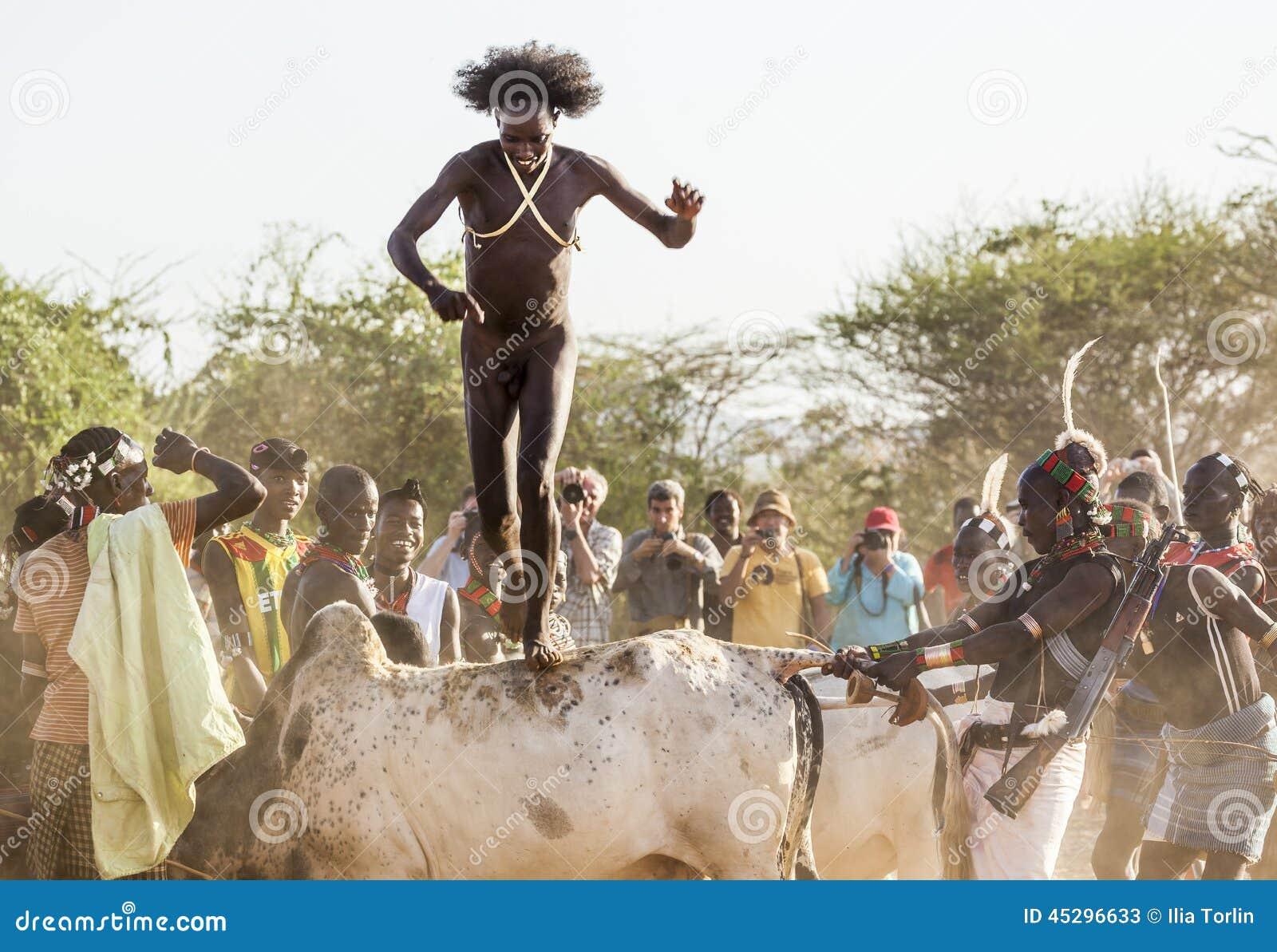 年轻人跳公牛 图尔米, Omo谷,埃塞俄比亚