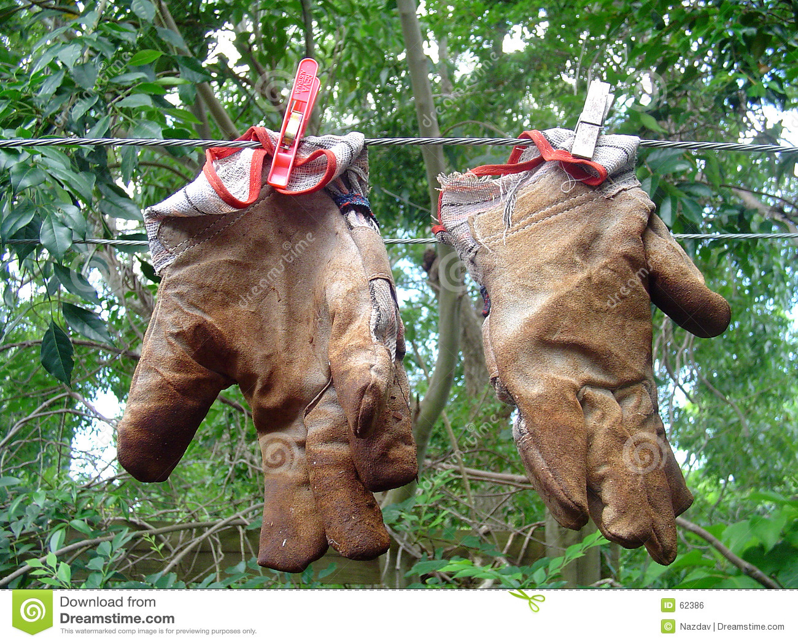 从事园艺的手套