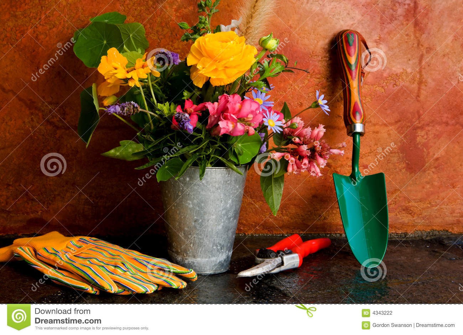 从事园艺的春天工具