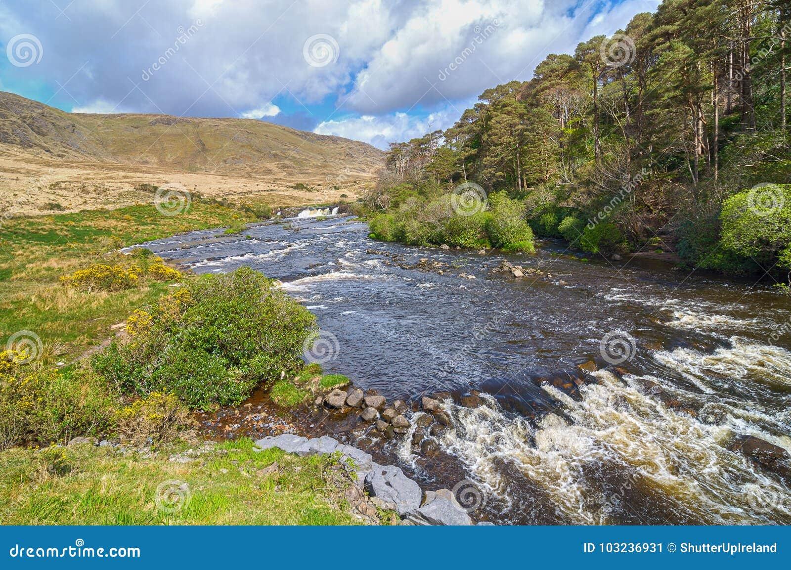 从县戈尔韦的史诗爱尔兰农村乡下沿狂放的大西洋方式