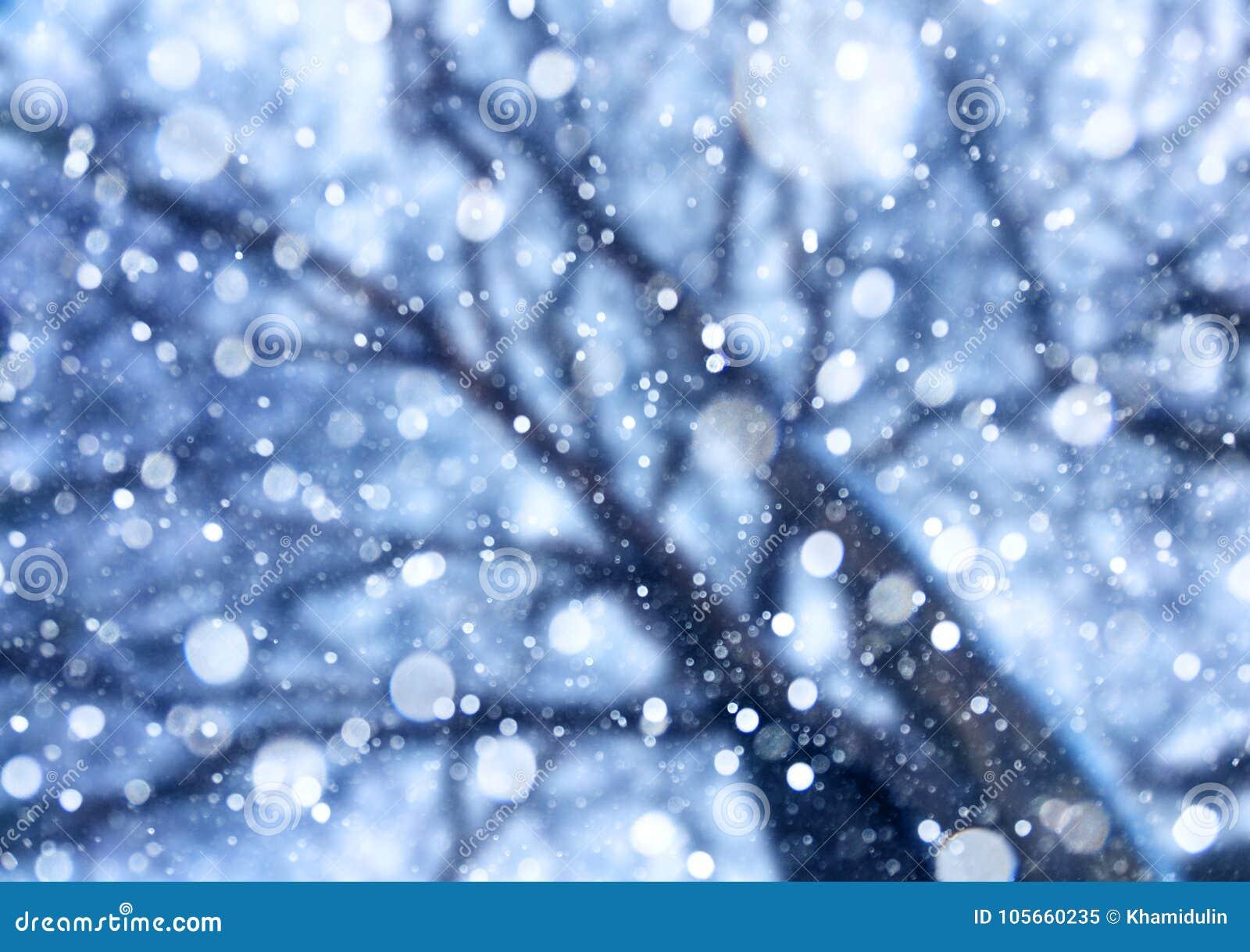 从天空的落的雪在树下