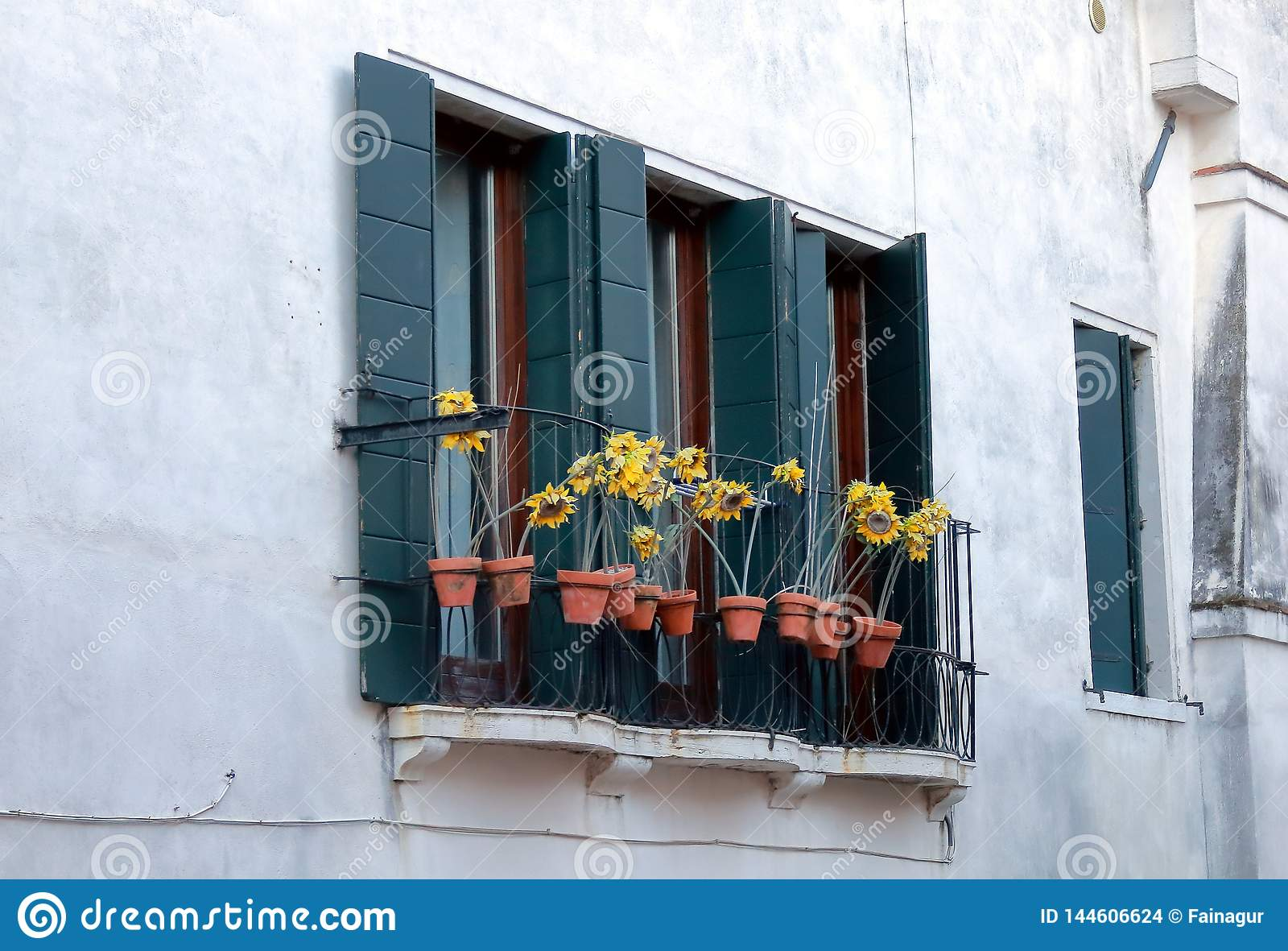 从威尼斯的一个窗口有装饰的