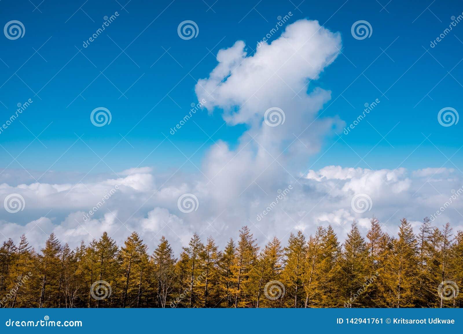 从富士山的风景视图 云彩海