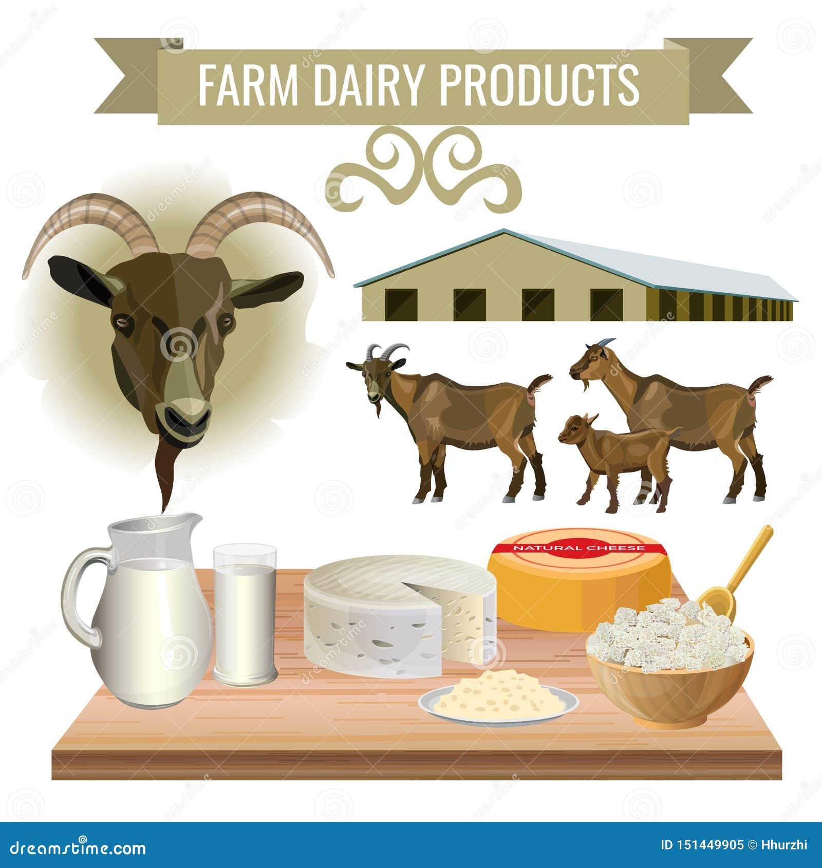 从山羊的乳制品
