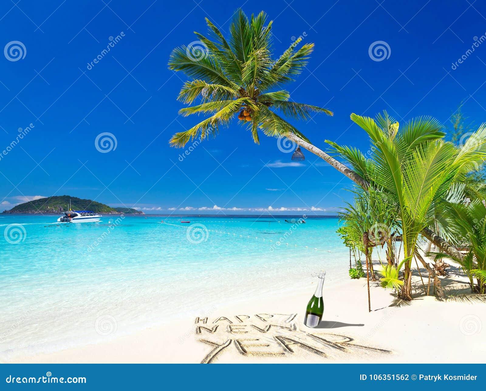从热带海滩的新年快乐愿望