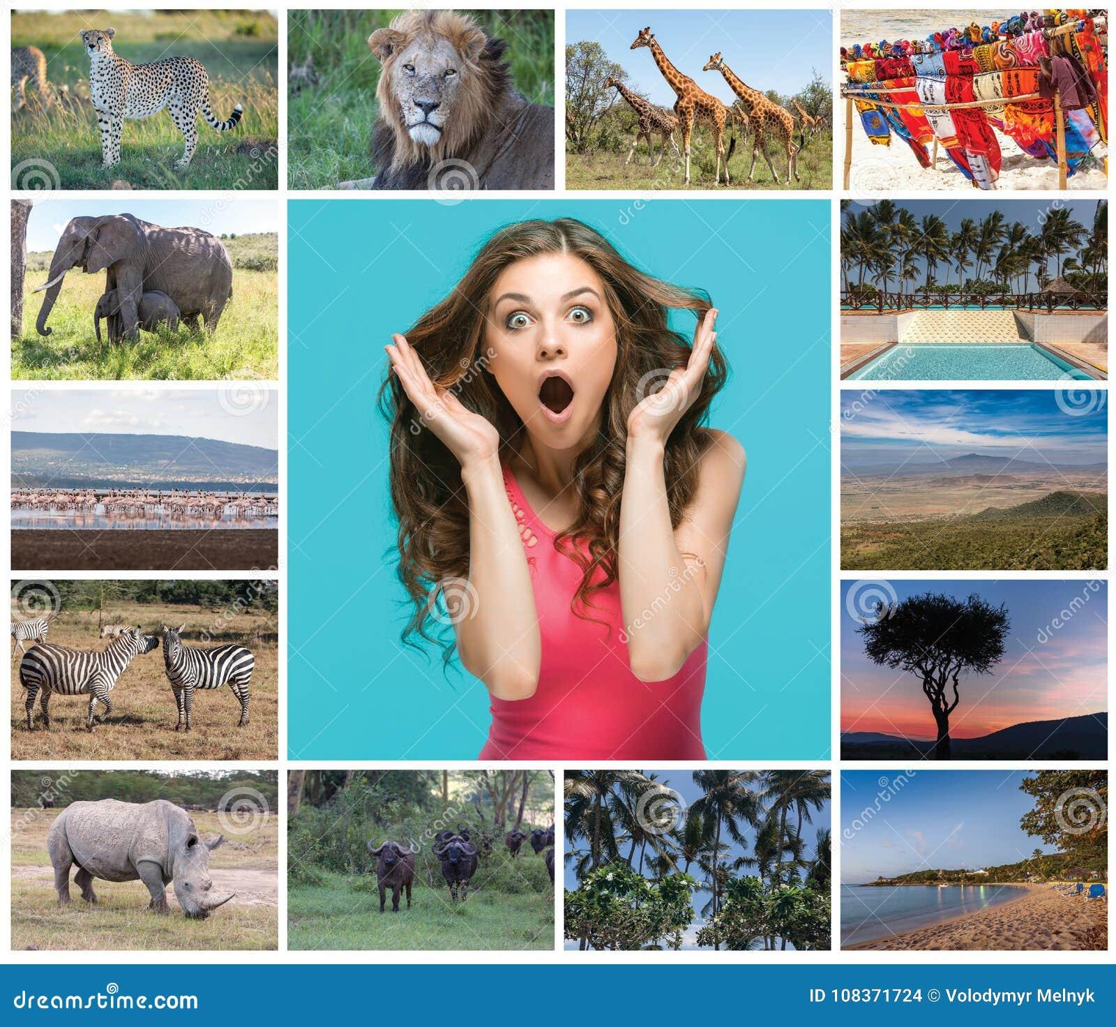 从野生生物的图象和肯尼亚的美丽的景色的拼贴画