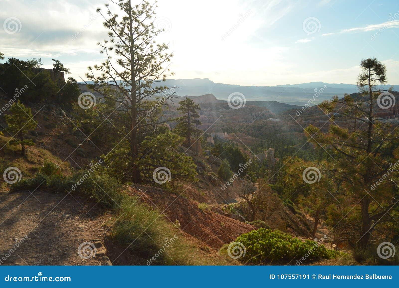 从高峰的美丽的景色在布赖斯峡谷 冷杉和地质结构 地质 旅行 自然
