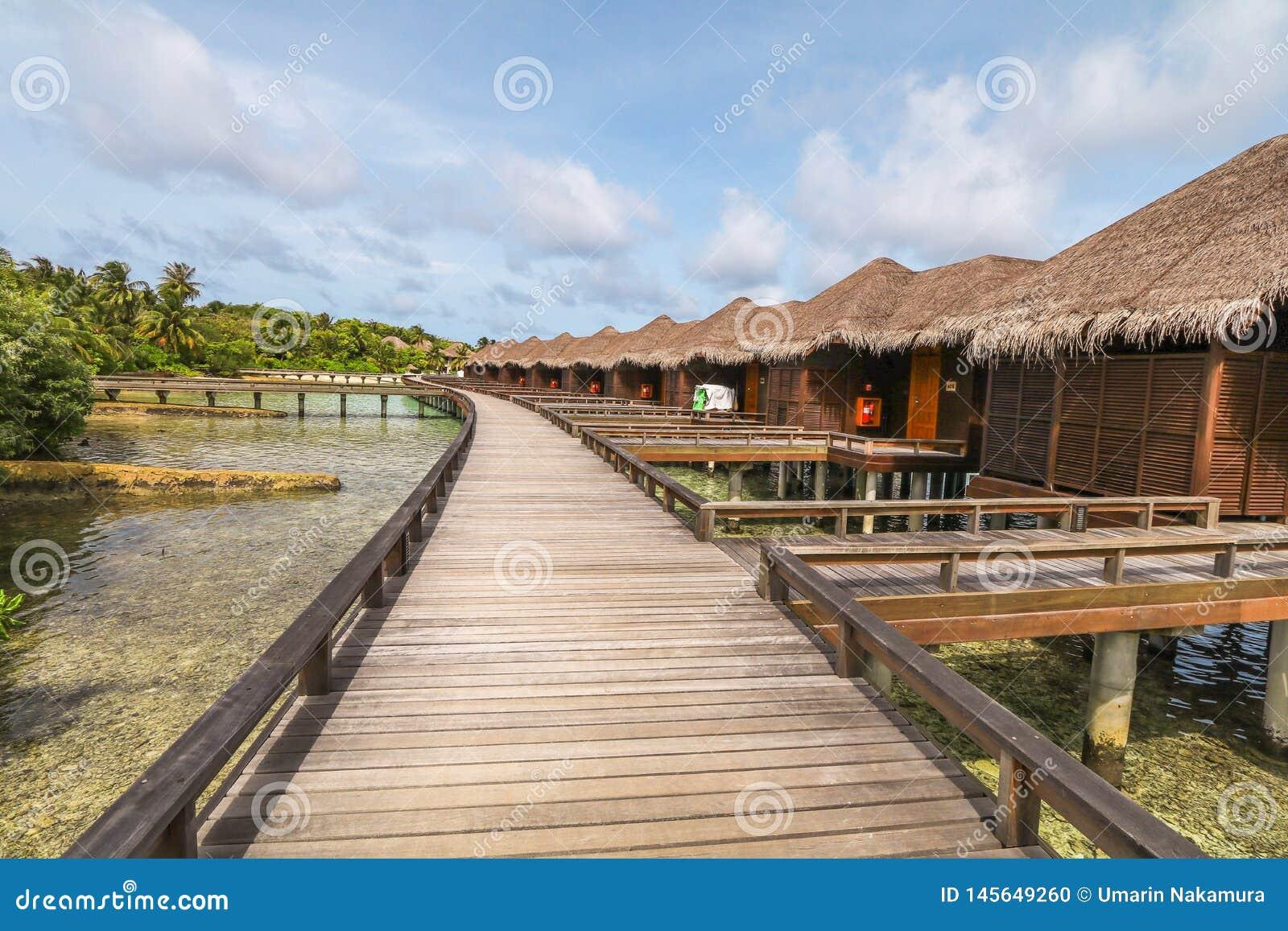 令人惊讶的海岛在马尔代夫、水别墅、木桥和美丽的绿松石水域中有天空蔚蓝背景为假日