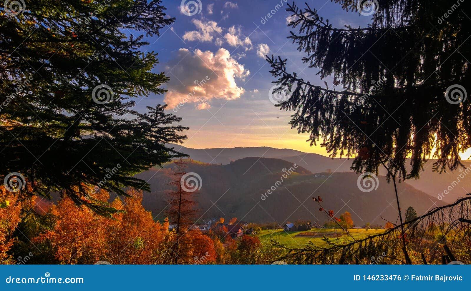 令人惊讶的看法 美好的秋天风景 树的秋天颜色秀丽  五颜六色的风景在秋天
