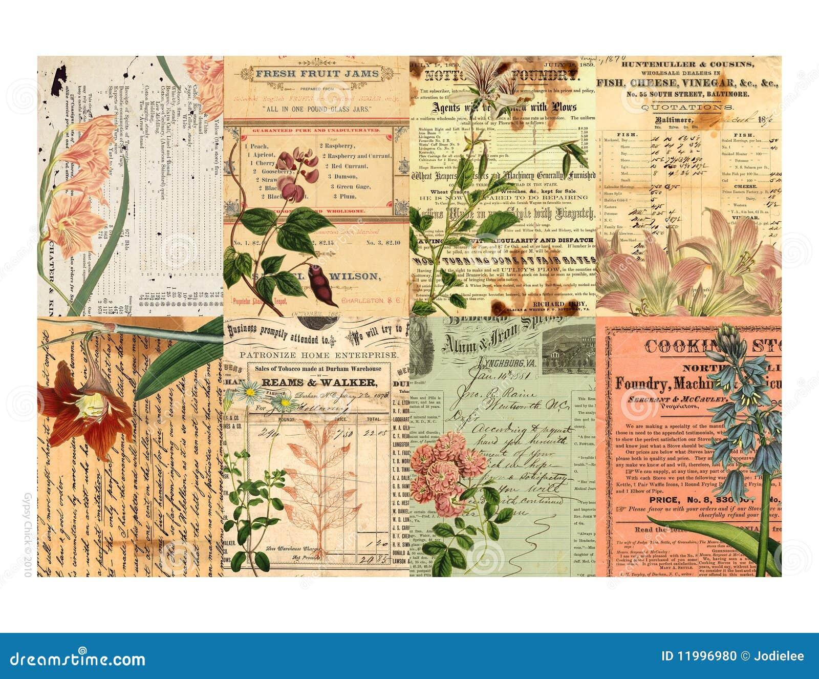 以花卉可打印的标签为特色的拼贴画