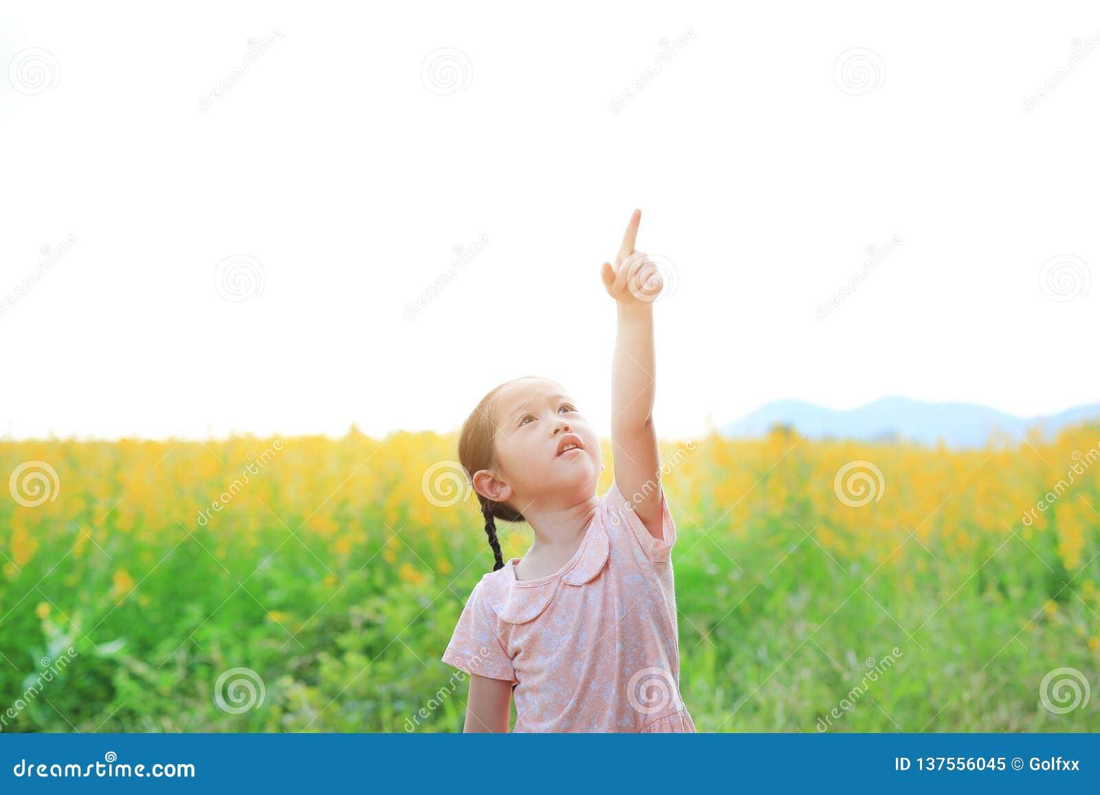 任意感觉与指向的可爱的矮小的亚裔孩子女孩在阳大麻领域 黄色开花背景