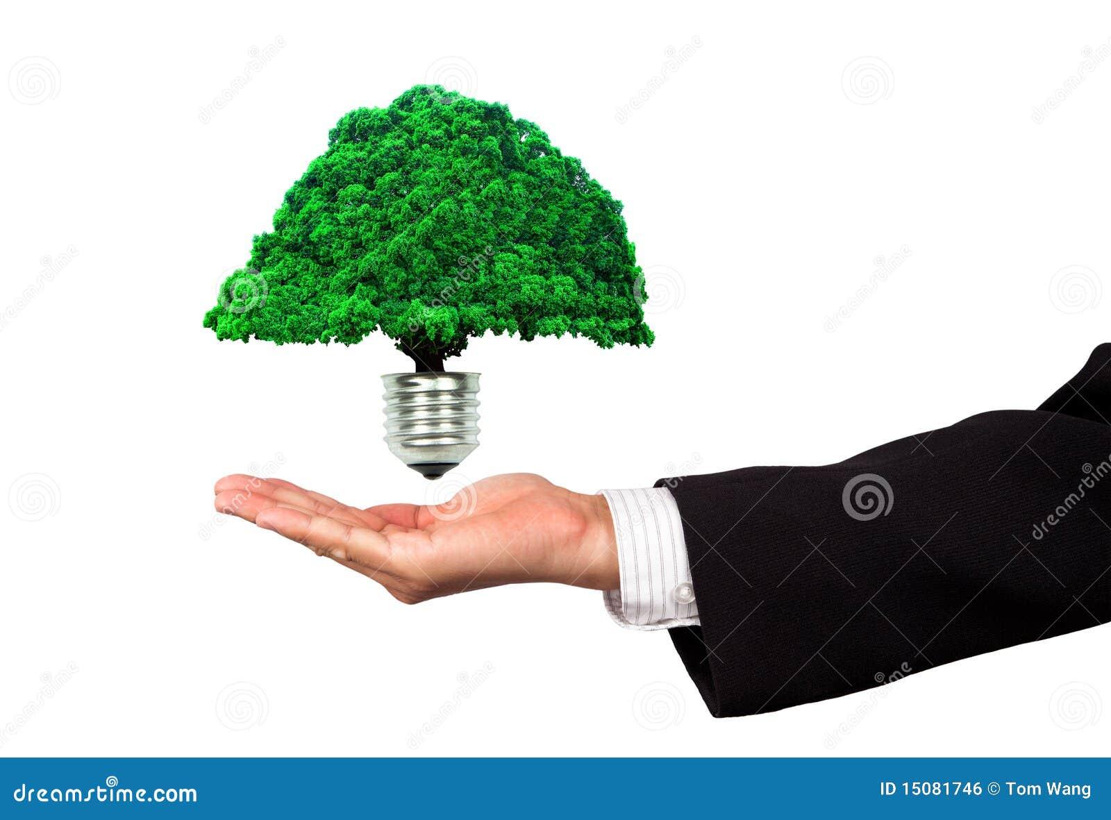 企业eco