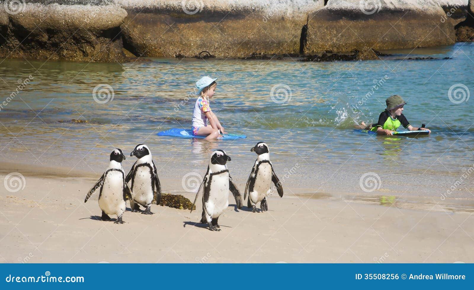企鹅和孩子
