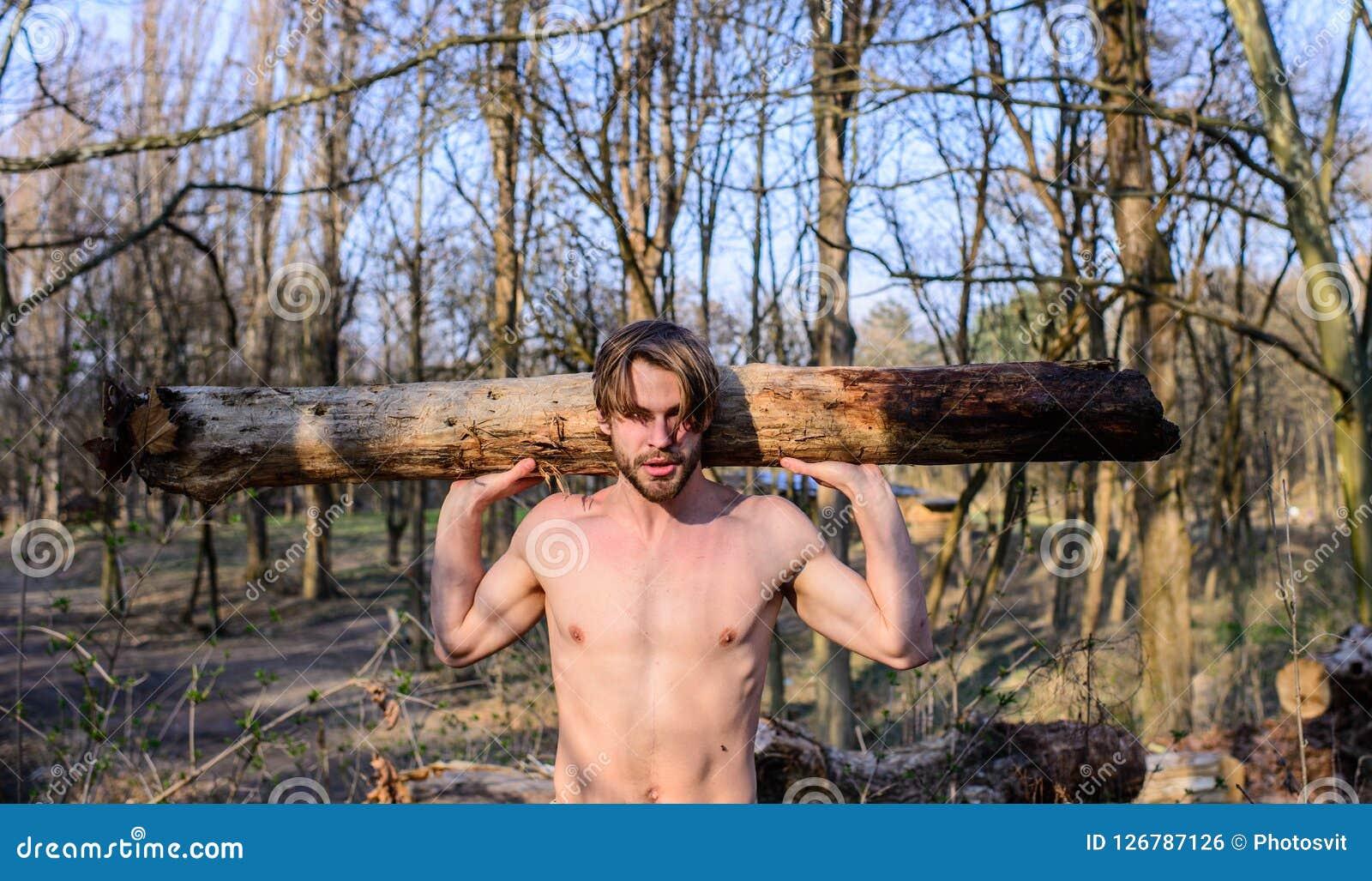 伐木工人或会集木头的樵夫性感的赤裸肌肉躯干 人成串珠状的残酷性感的伐木工人运载大重的日志