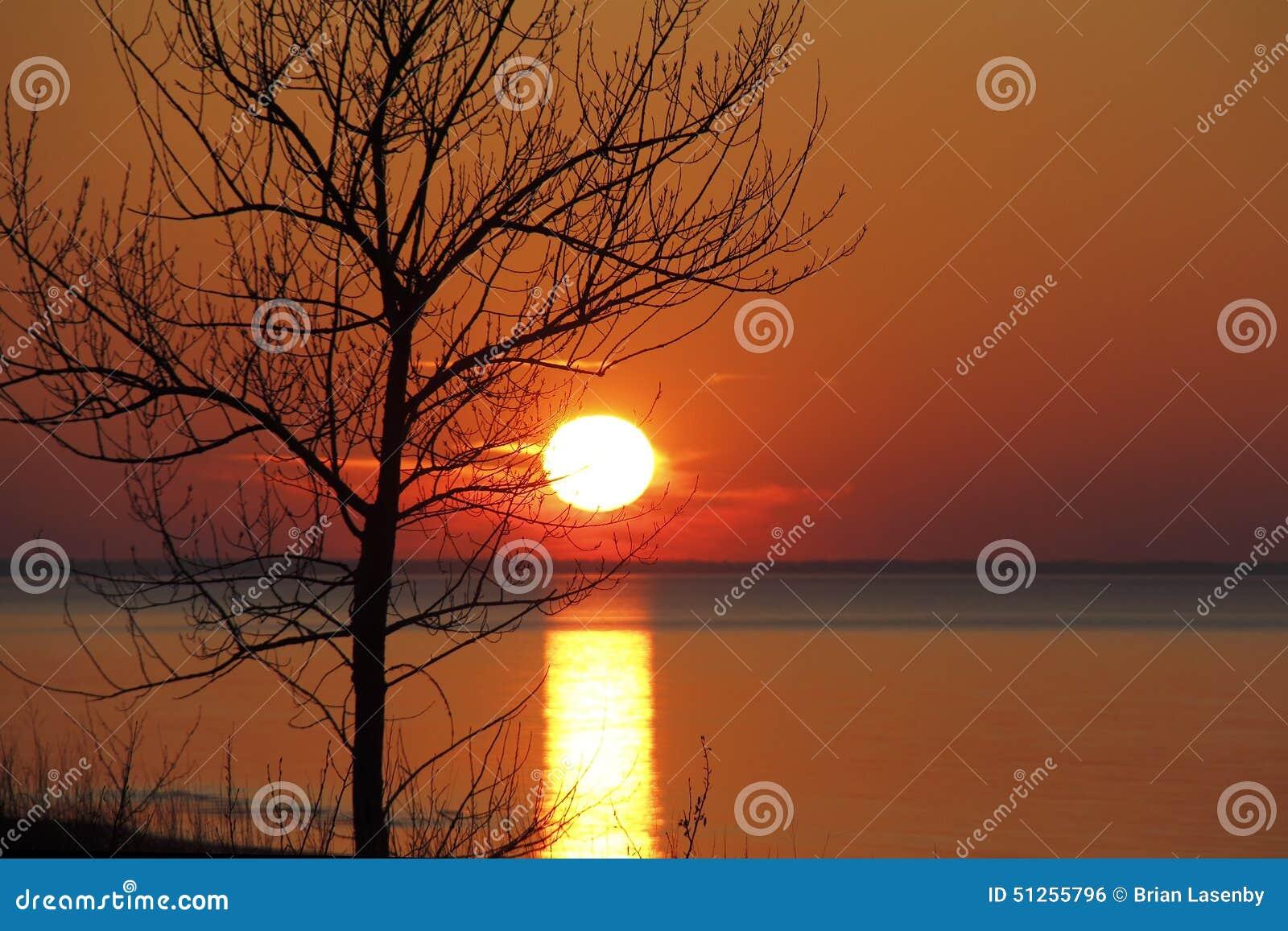 休伦湖日落现出轮廓的秋天树