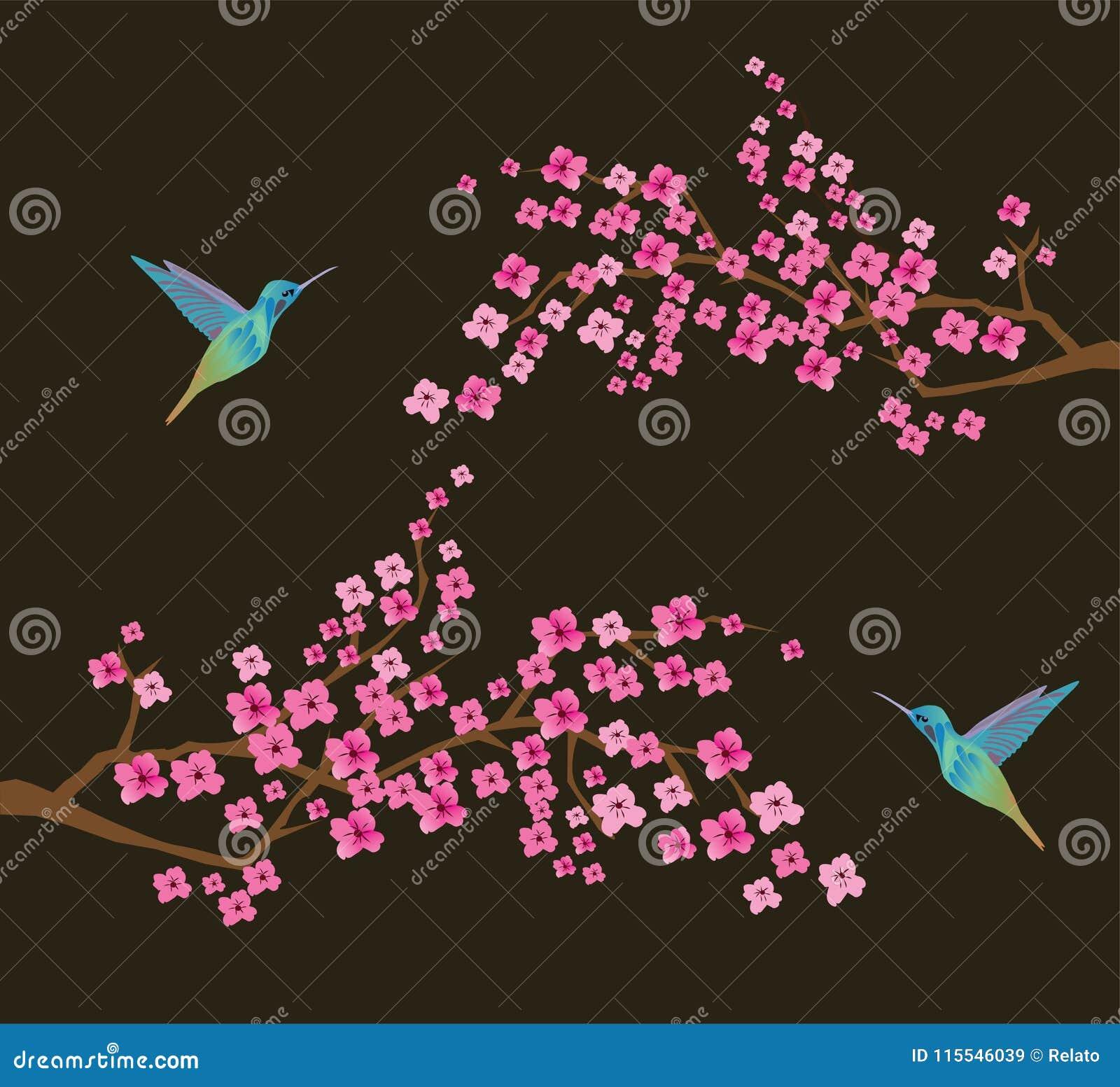 传染媒介与蜂鸟的樱花分支