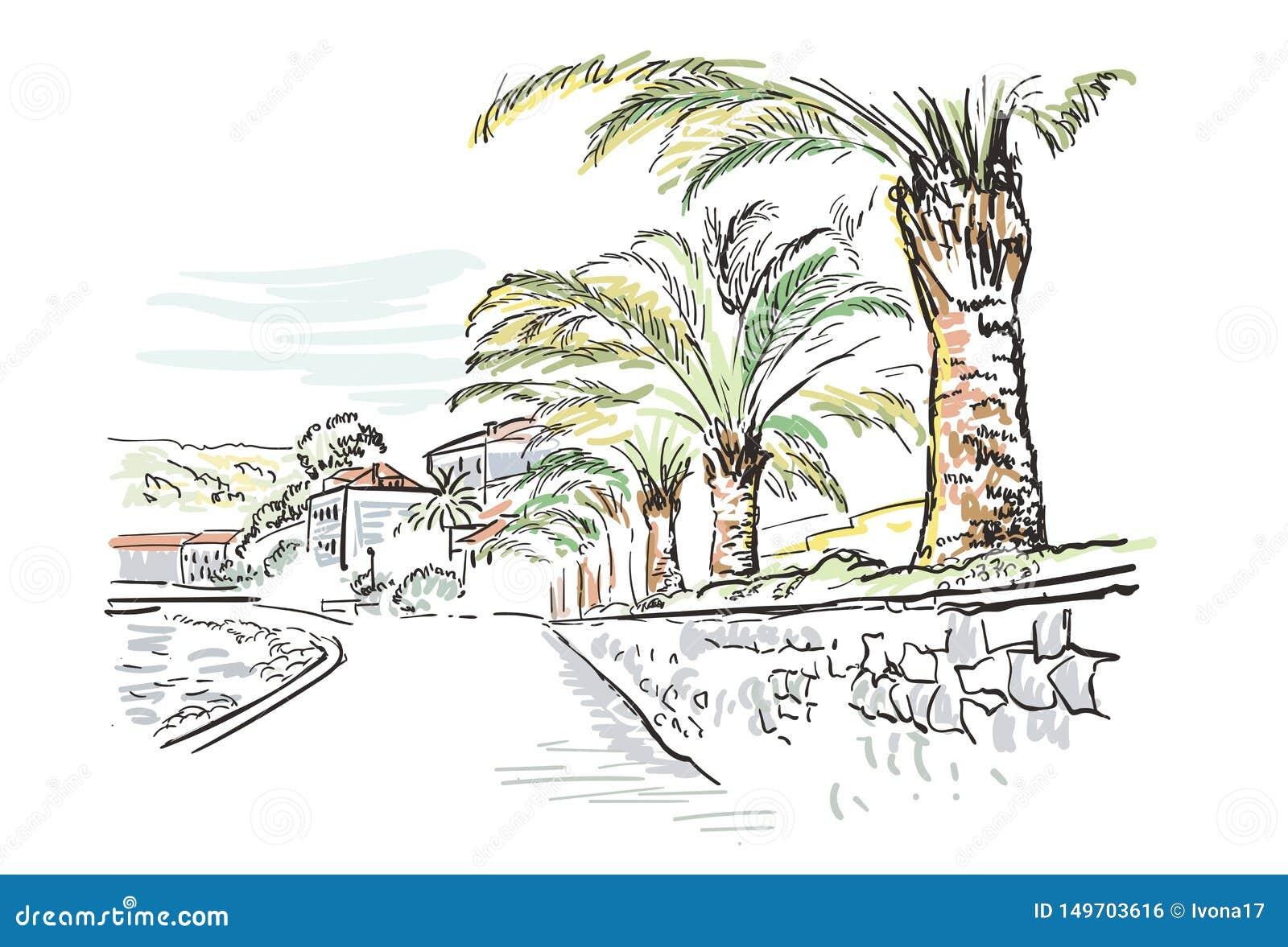 传染媒介剪影例证欧洲城市堤防克罗地亚棕榈