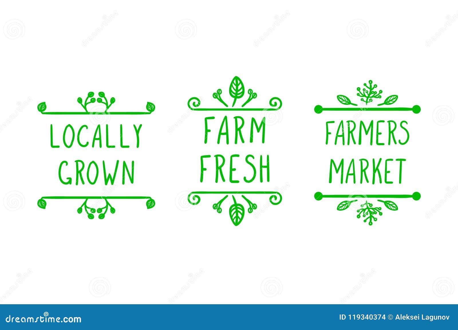传染媒介手拉的种田的象,乱画花卉框架和手写的信件:农夫销售,当地增长并且种田新鲜