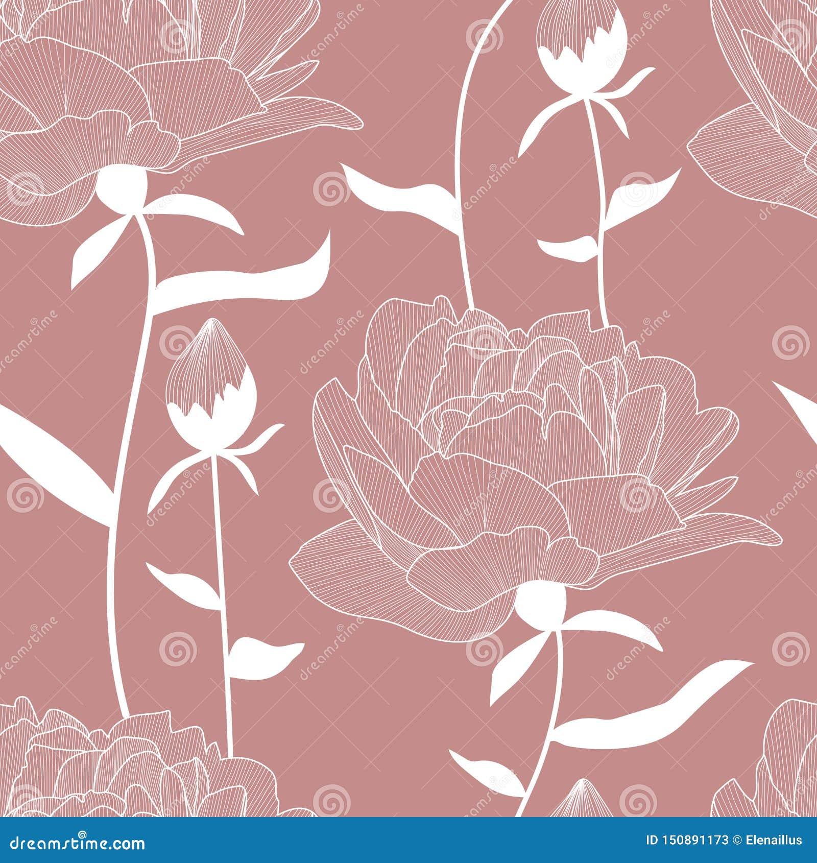 传染媒介无缝的样式、印刷品与白色等高,手拉的中介子、花和芽,叶子 典雅,浪漫花卉纹理 bac