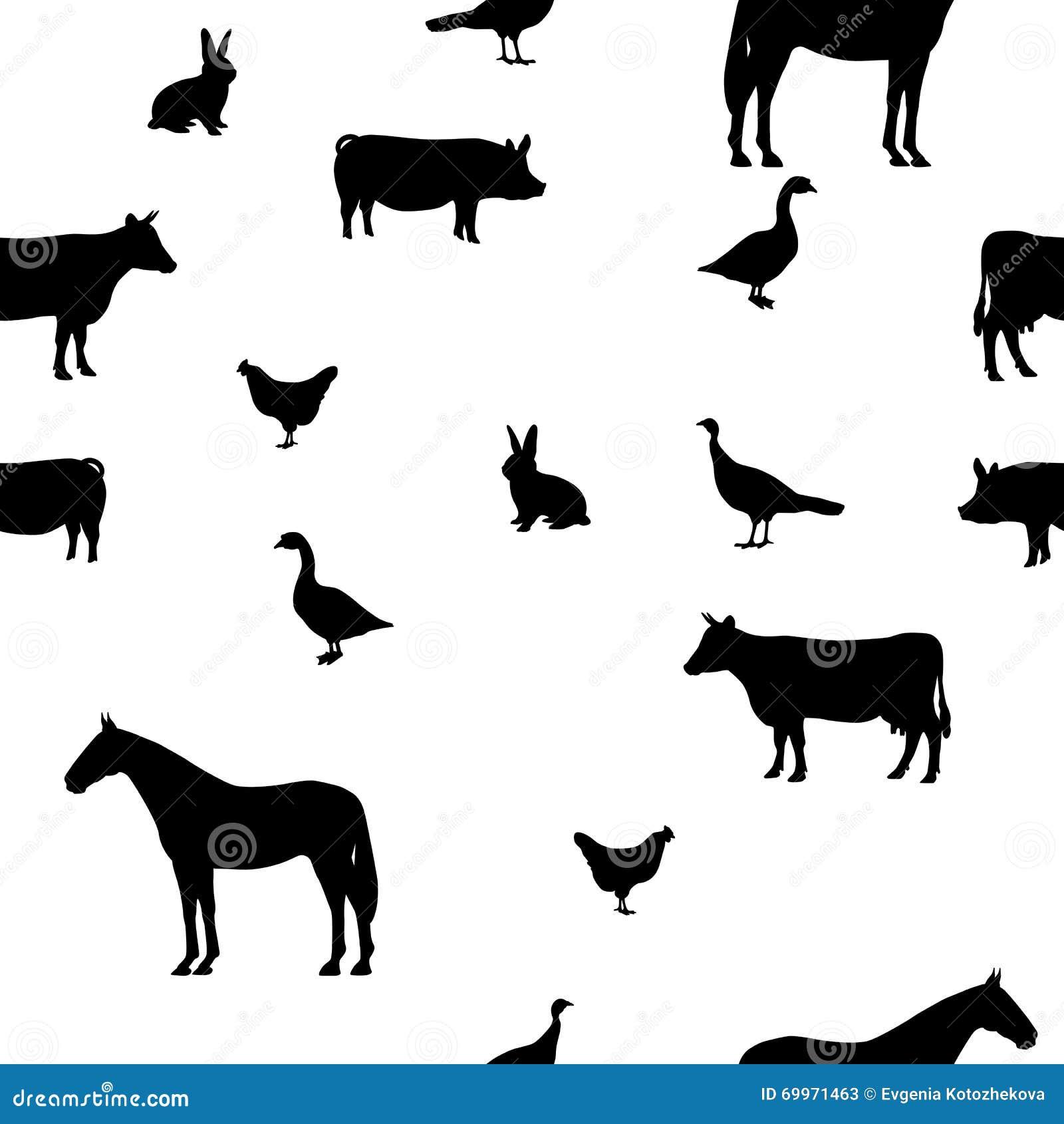 传染媒介例证无缝的样式宠物