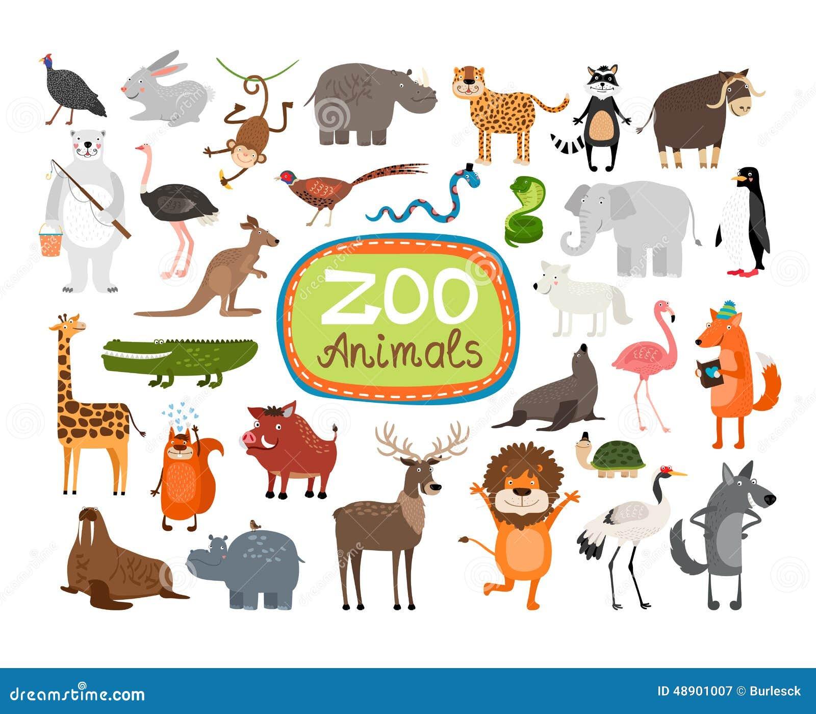 传染媒介动物园动物