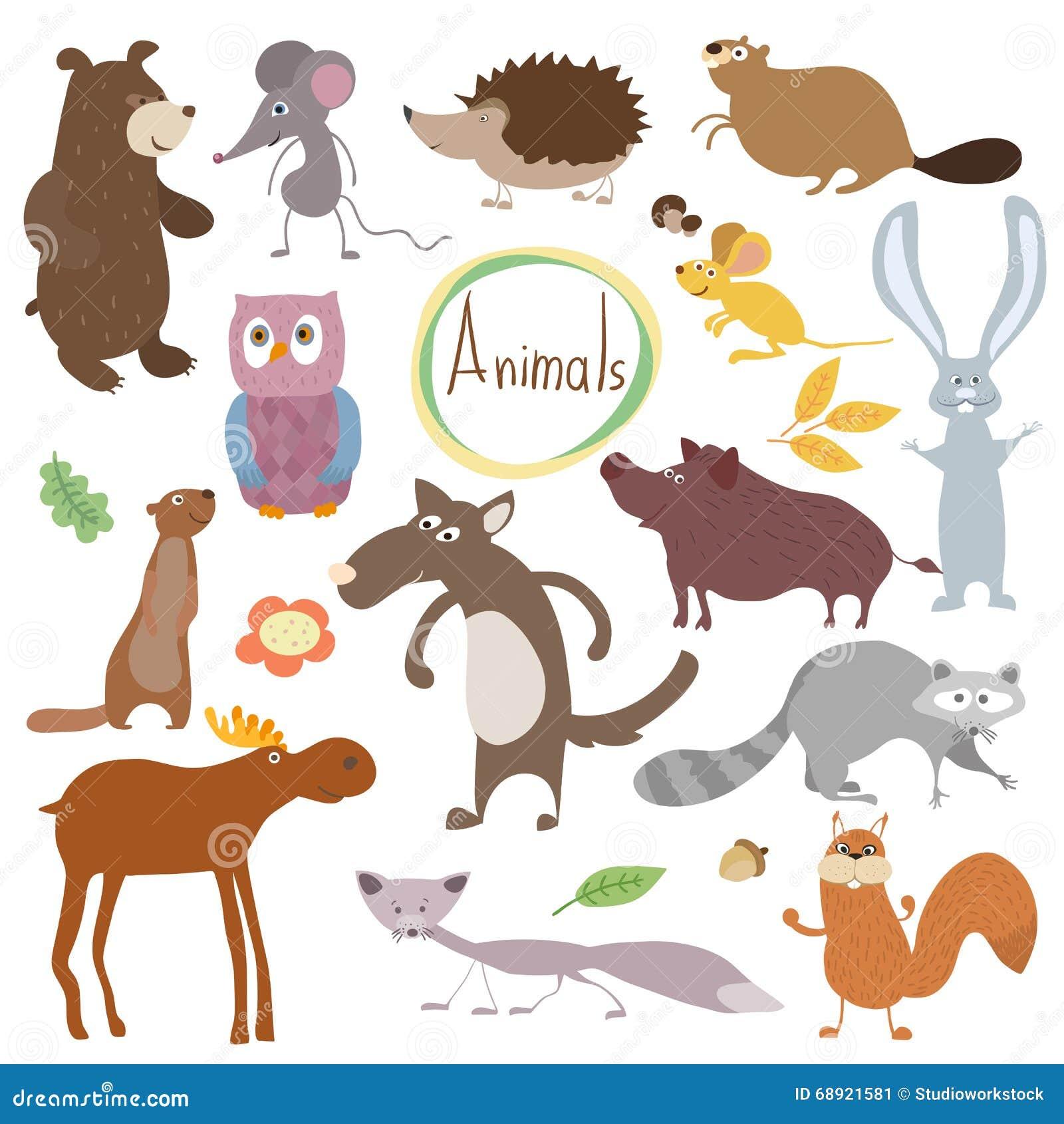 在白色背景中隔绝的野生和森林传染媒介动物 漫画人物例证 滑稽的动物图片