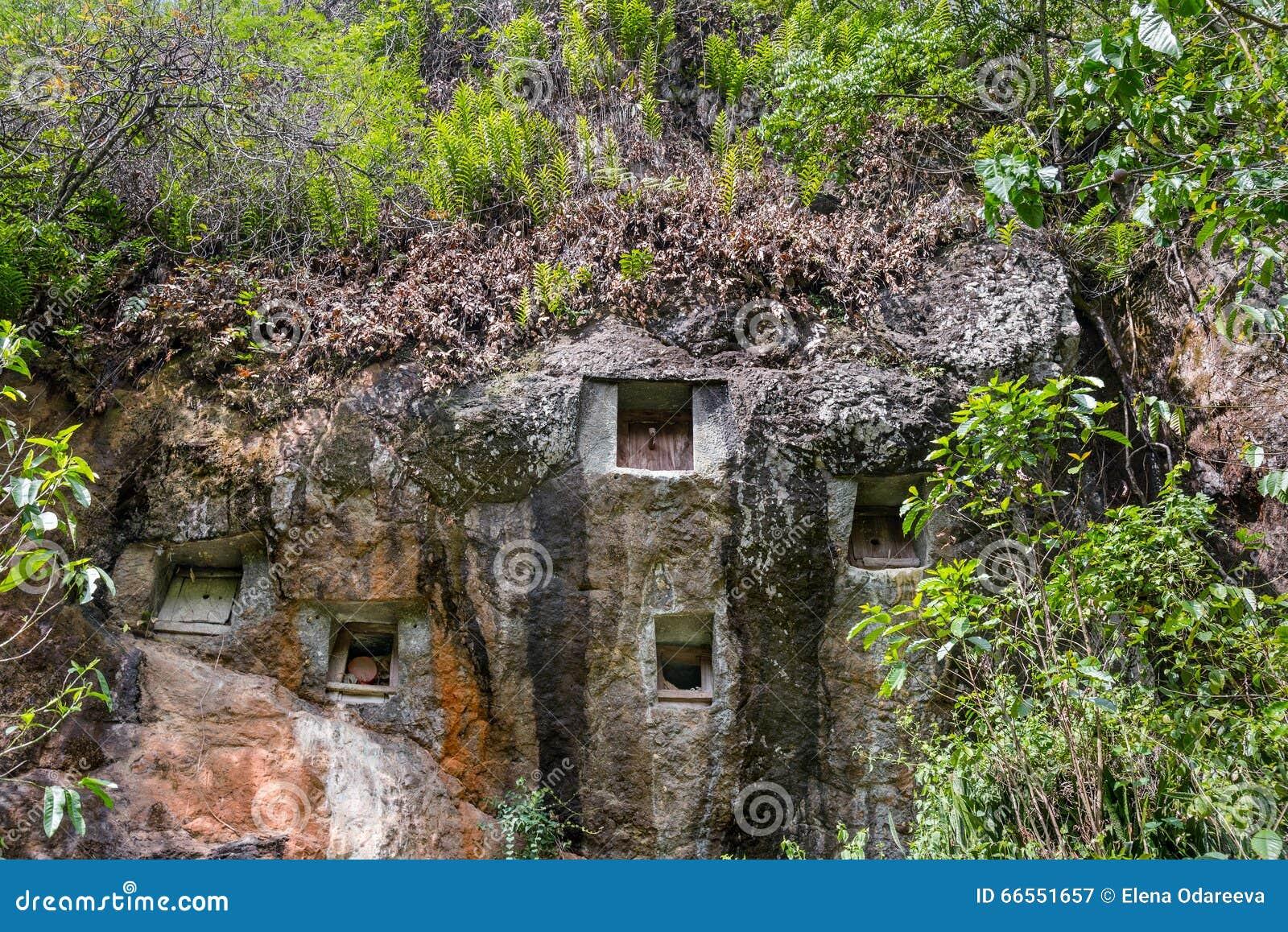 传统洞坟墓在岩石雕刻了在Lemo 塔娜Toraja,南苏拉威西岛,印度尼西亚