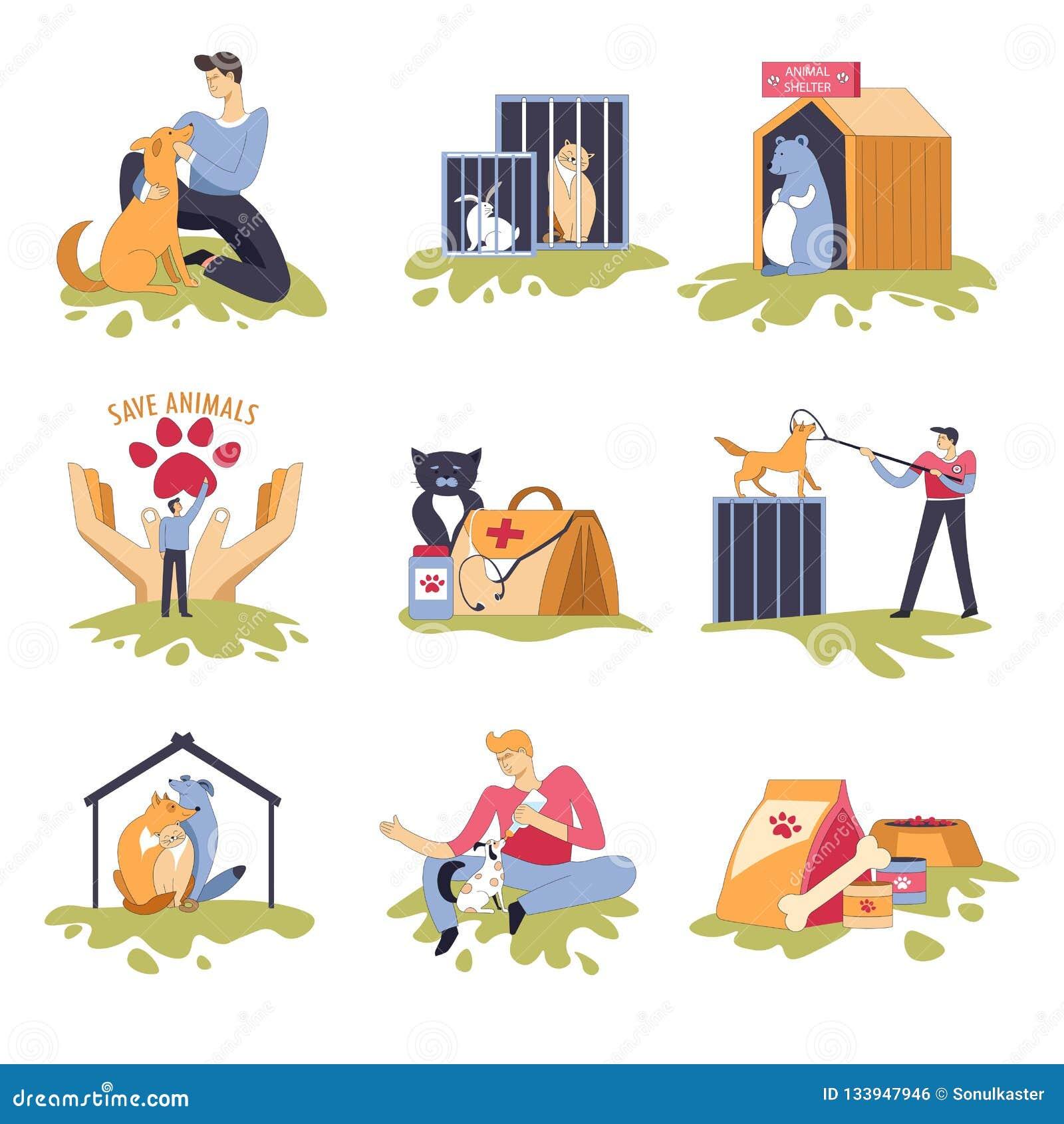 似犬和似猫的避难所狗和猫房子