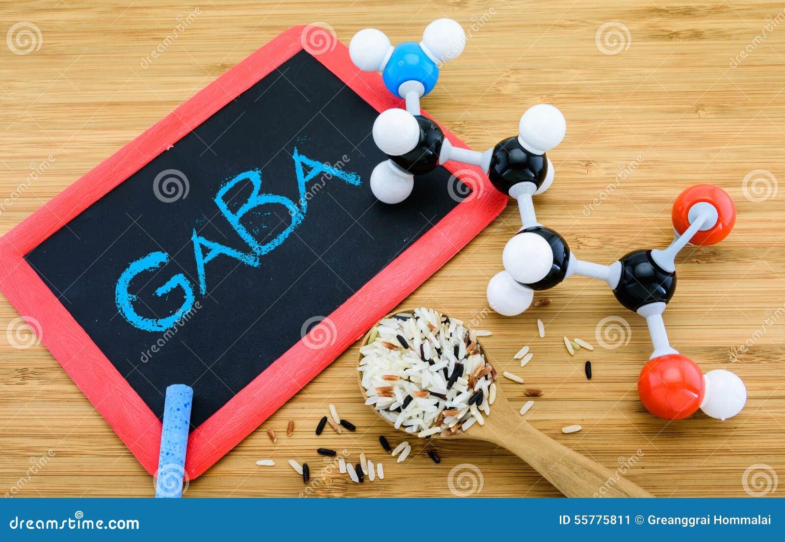 伽玛氨基丁酸的酸(GABA)在发芽的米