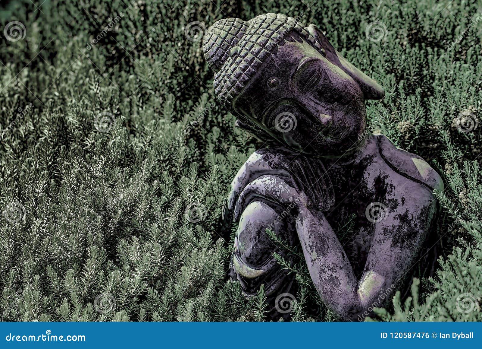 佛教和自然 传统菩萨s的大反差图象