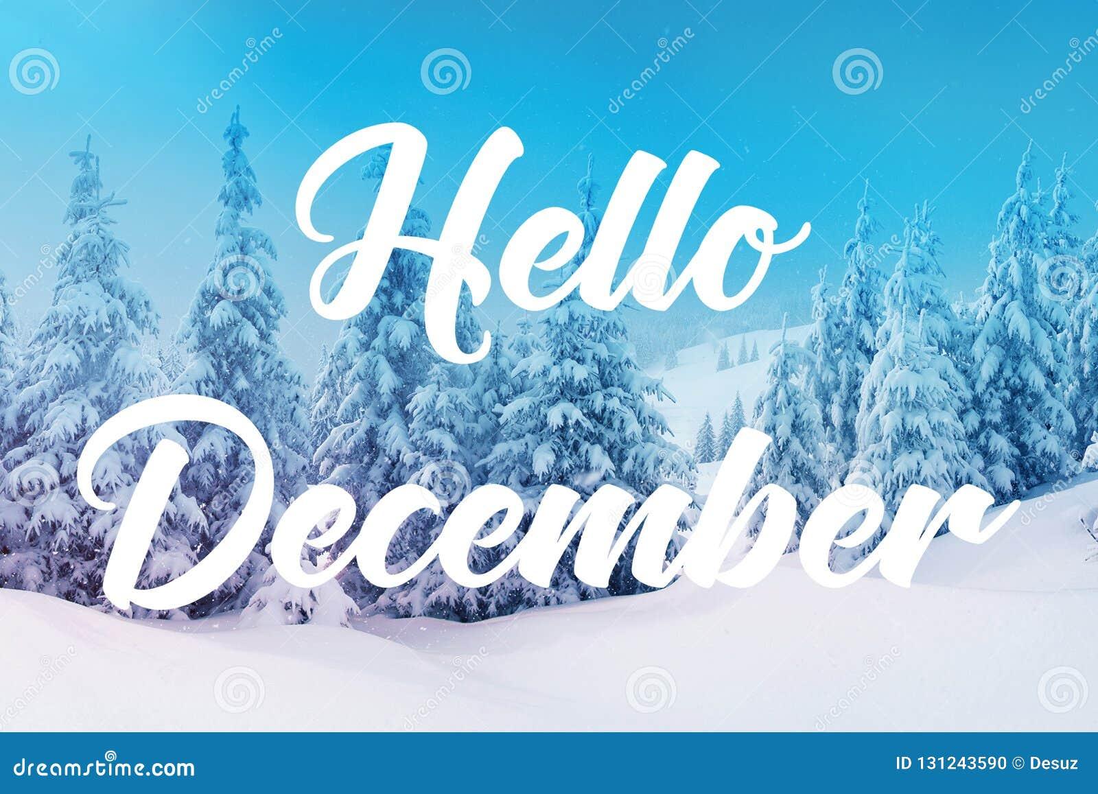 你好12月