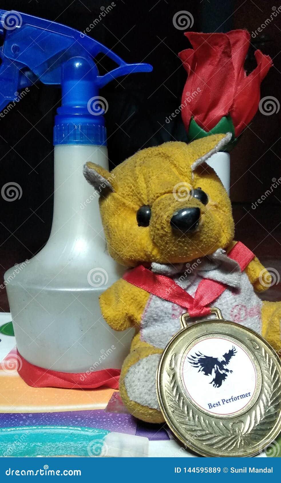 佩带奖牌的小的玩具熊与玫瑰和喷水瓶一起后边