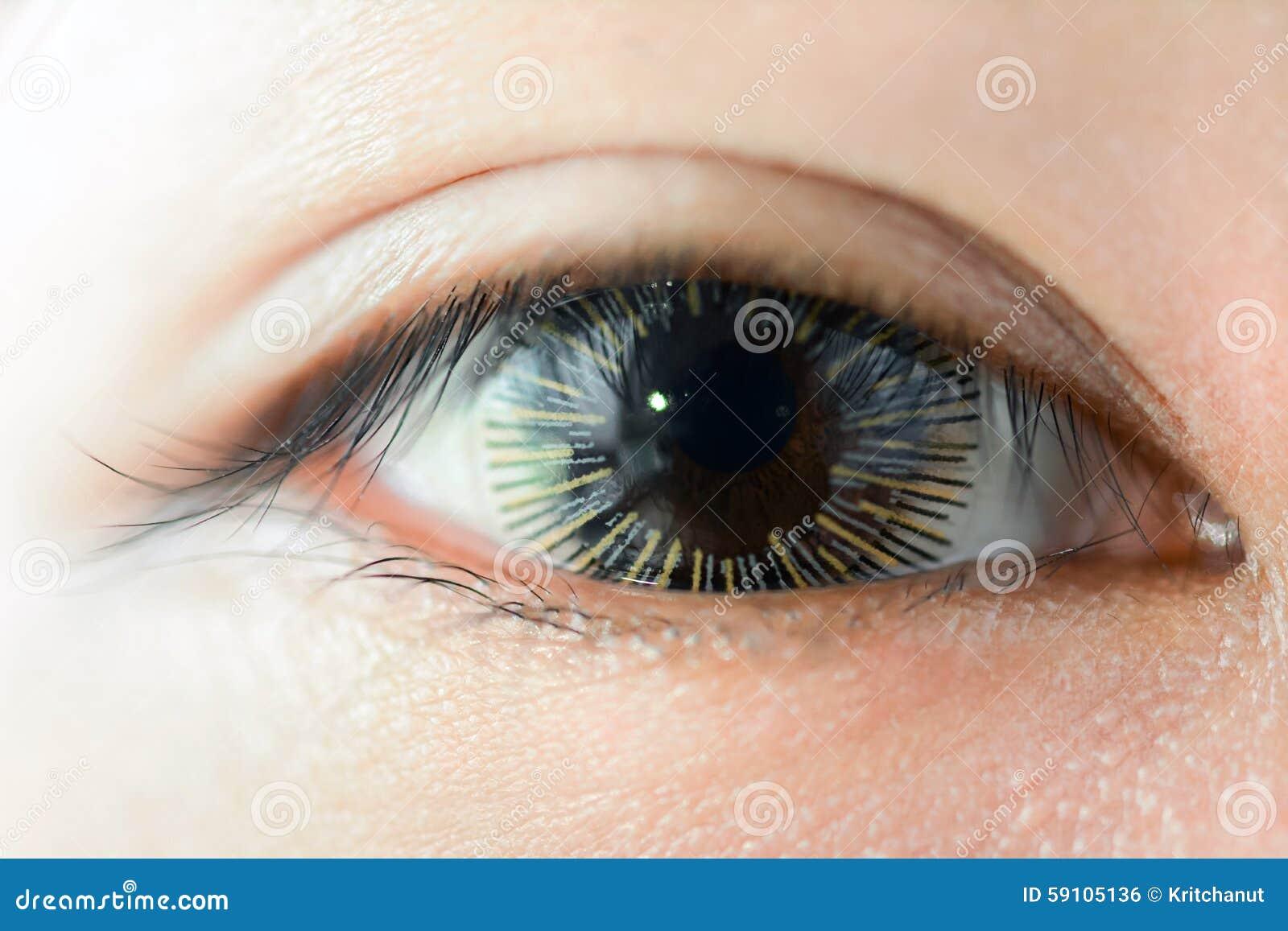 佩带花梢隐形眼镜的妇女眼睛