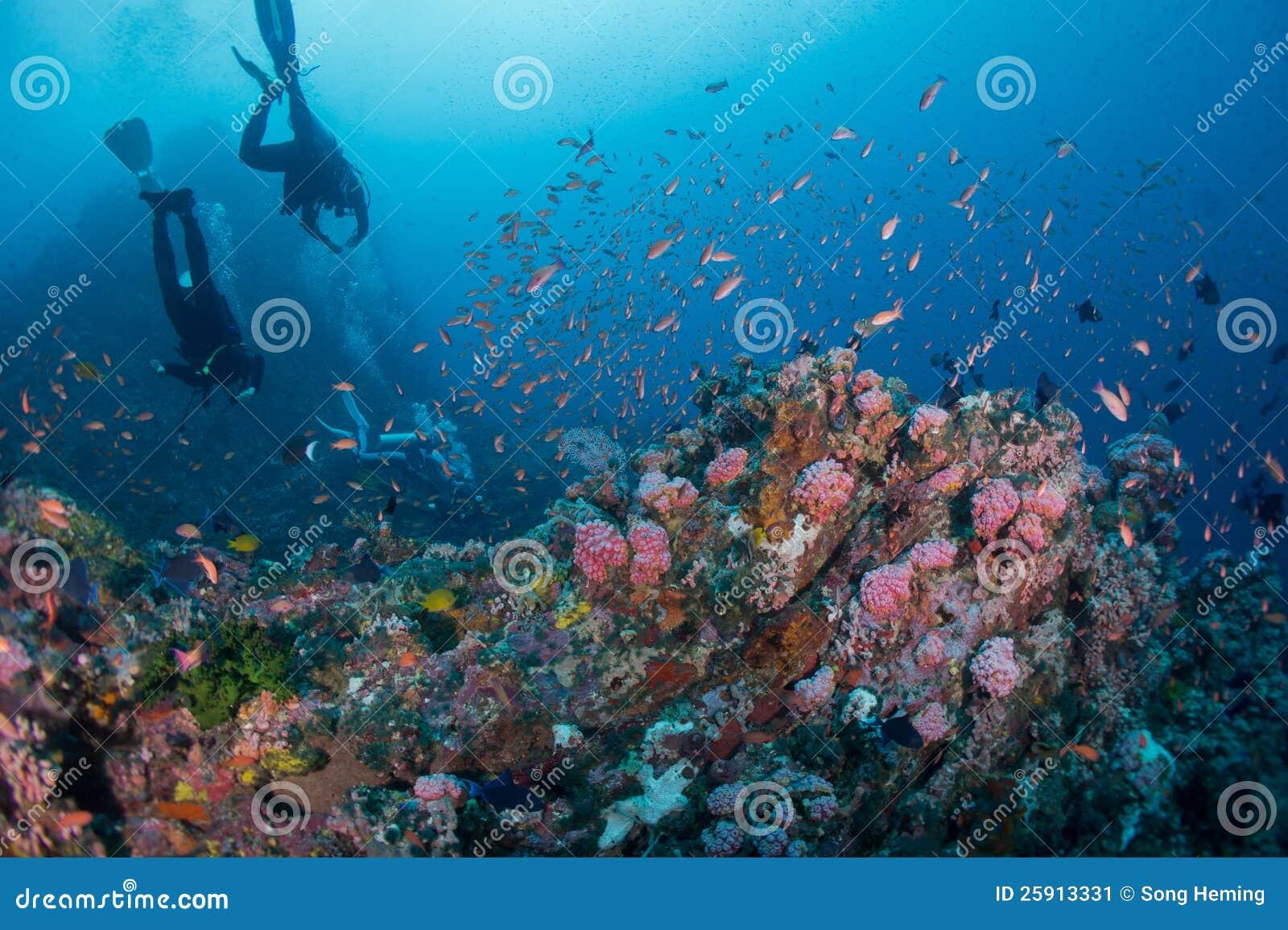 佩戴水肺的潜水