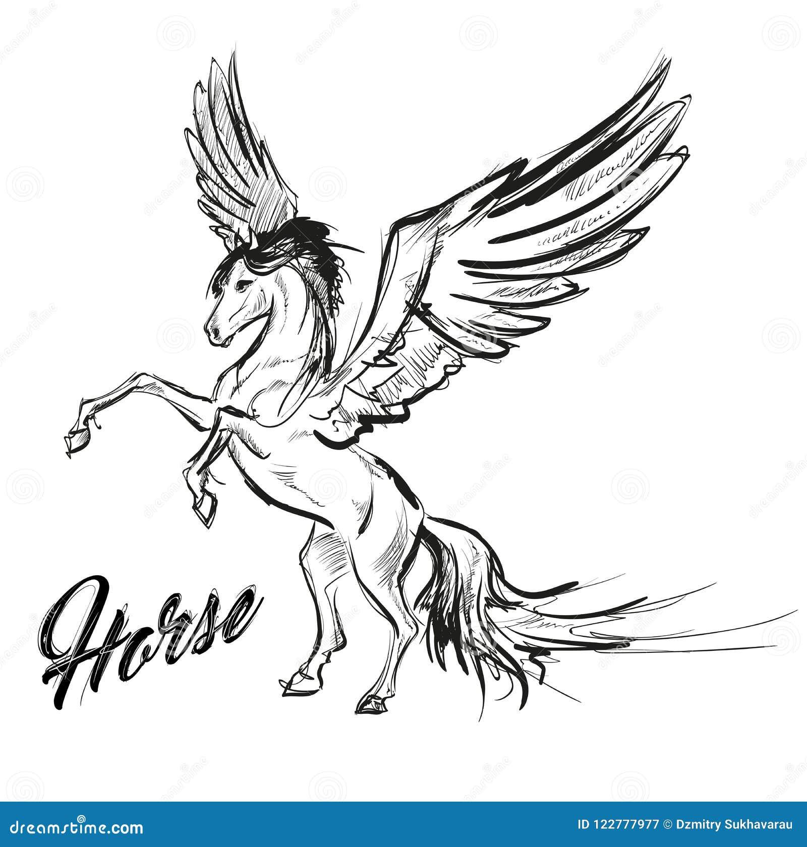 佩格瑟斯希腊神话生物