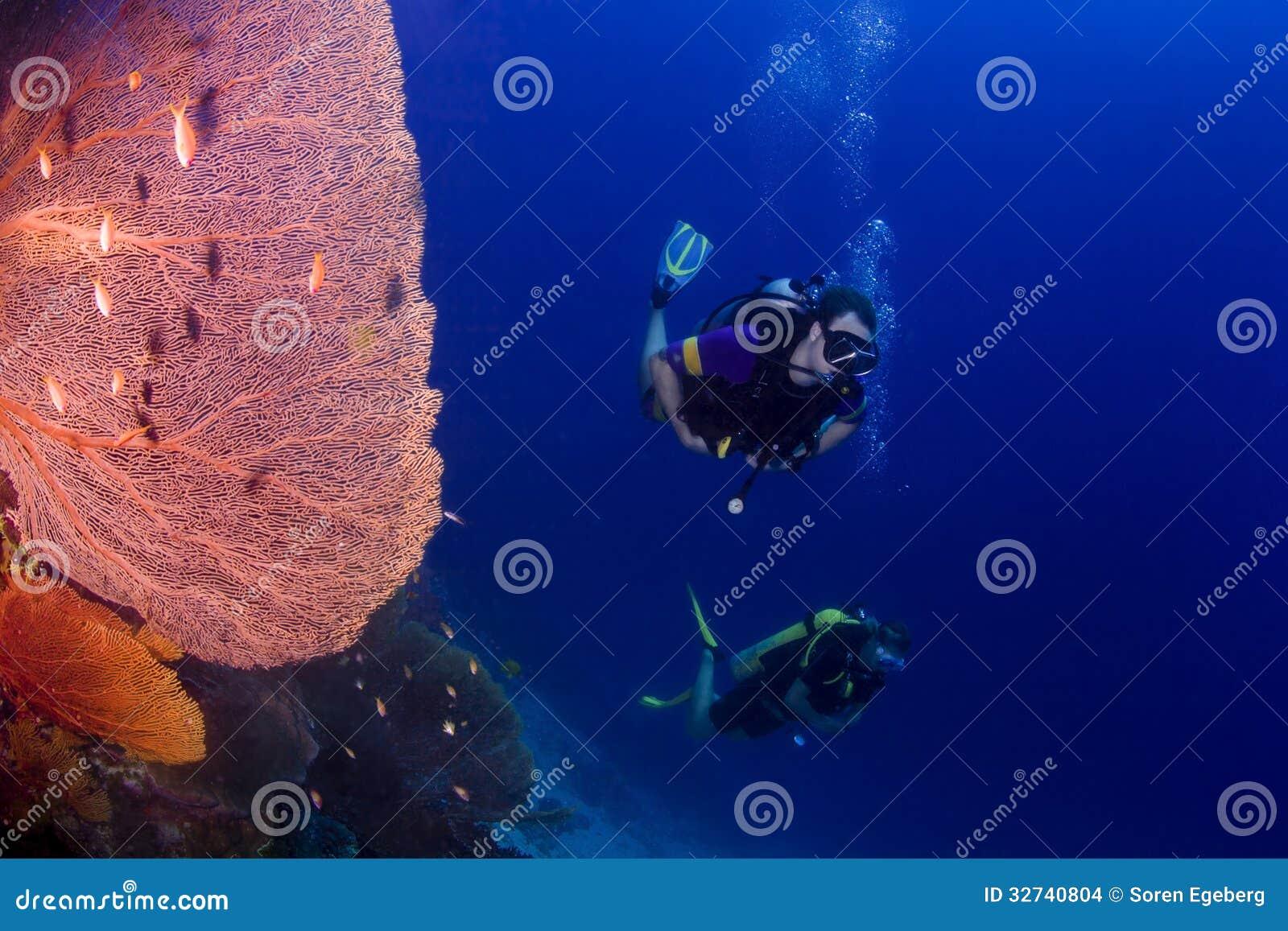 佩戴水肺的潜水在泰国