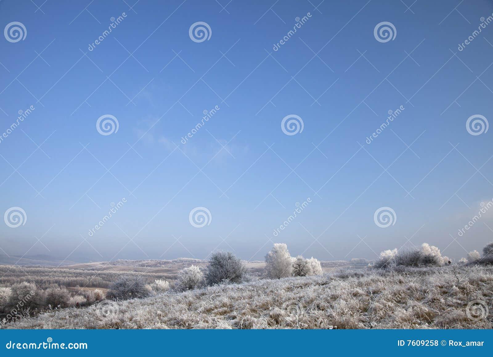 使冬天环境美化