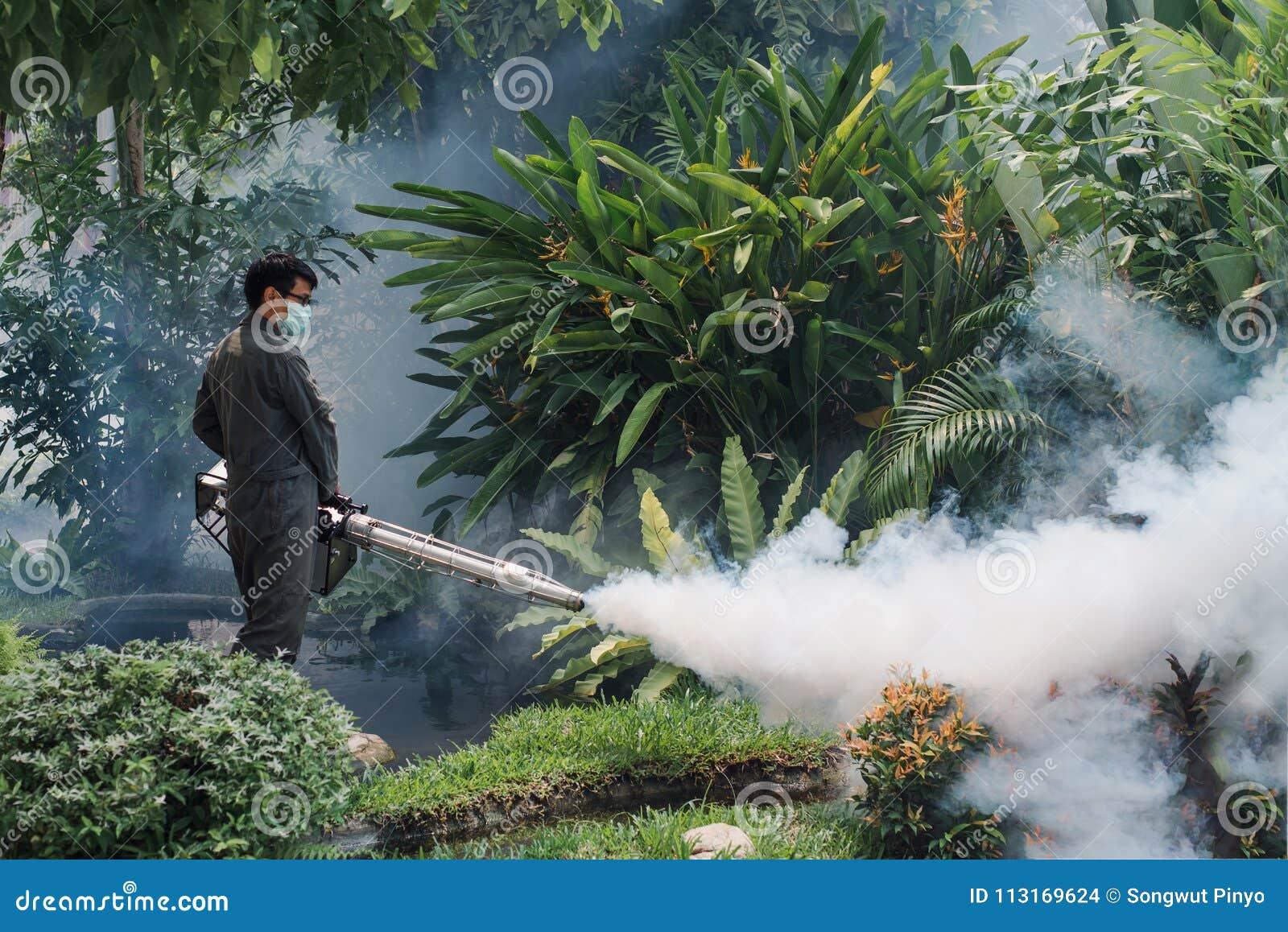 使模糊人的工作消灭防止的被传播的登革热和zika病毒蚊子