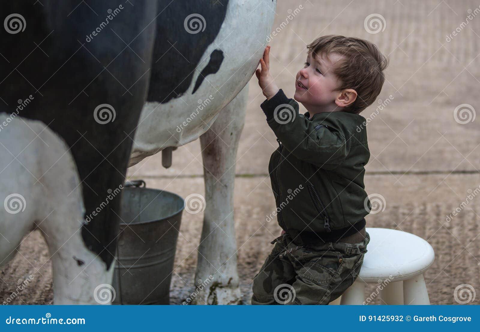 使用与复制品母牛的孩子