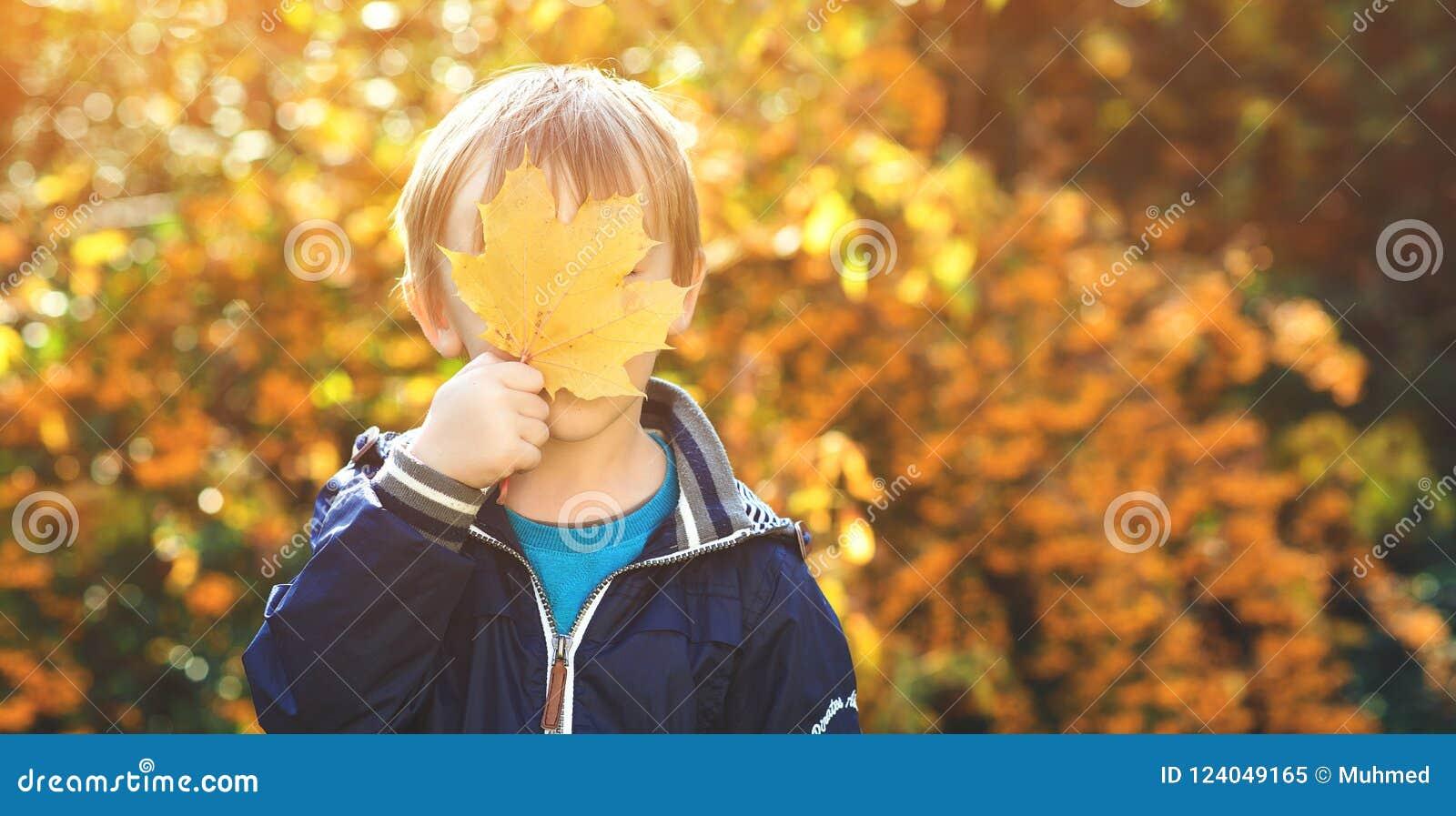 使用在秋天公园的滑稽的孩子 小男孩掩藏他的在枫叶后的眼睛 愉快的童年 秋天时间 孩子使用与aut