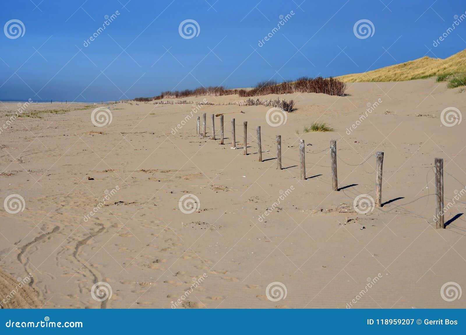 使荒凉的海滩