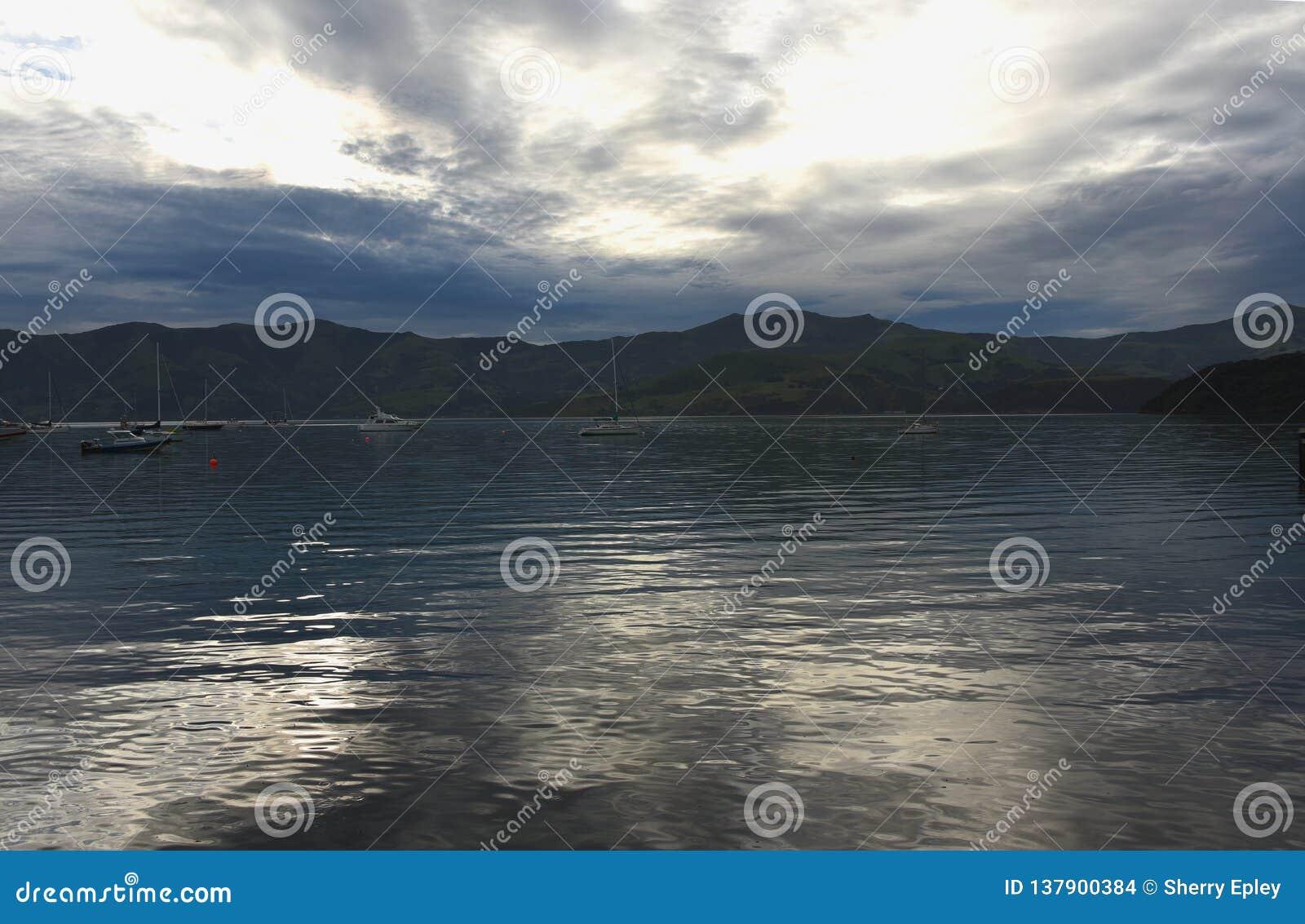 使被反射的日落光惊奇的新的西兰在Akaroa