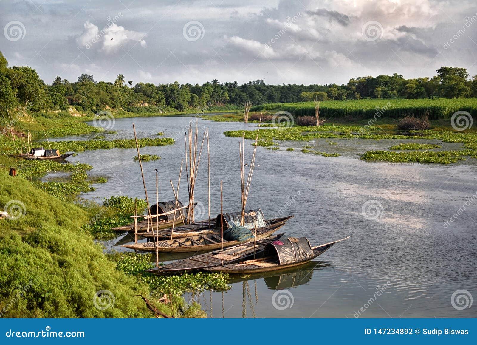 使Jalangi河惊奇风景,是恒河的分支在西部印度州的穆尔斯希达巴德和纳迪亚区